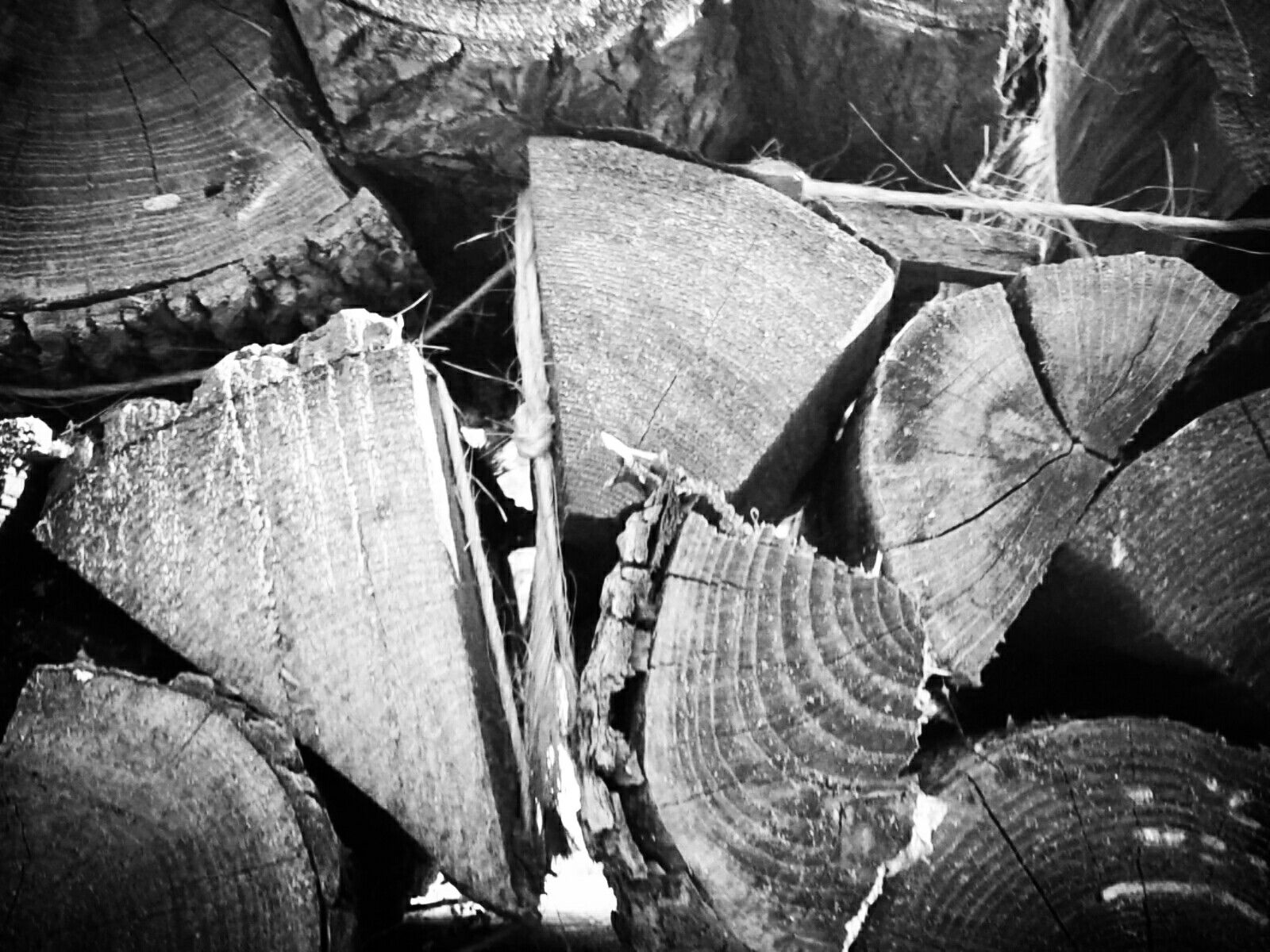 My wood pile in black and white. / by no64891 | My Photography ...