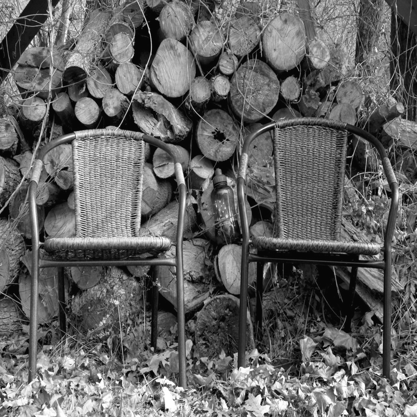 In the Corner Back by the Woodpile #139: Amplifying the Muted Voices ...