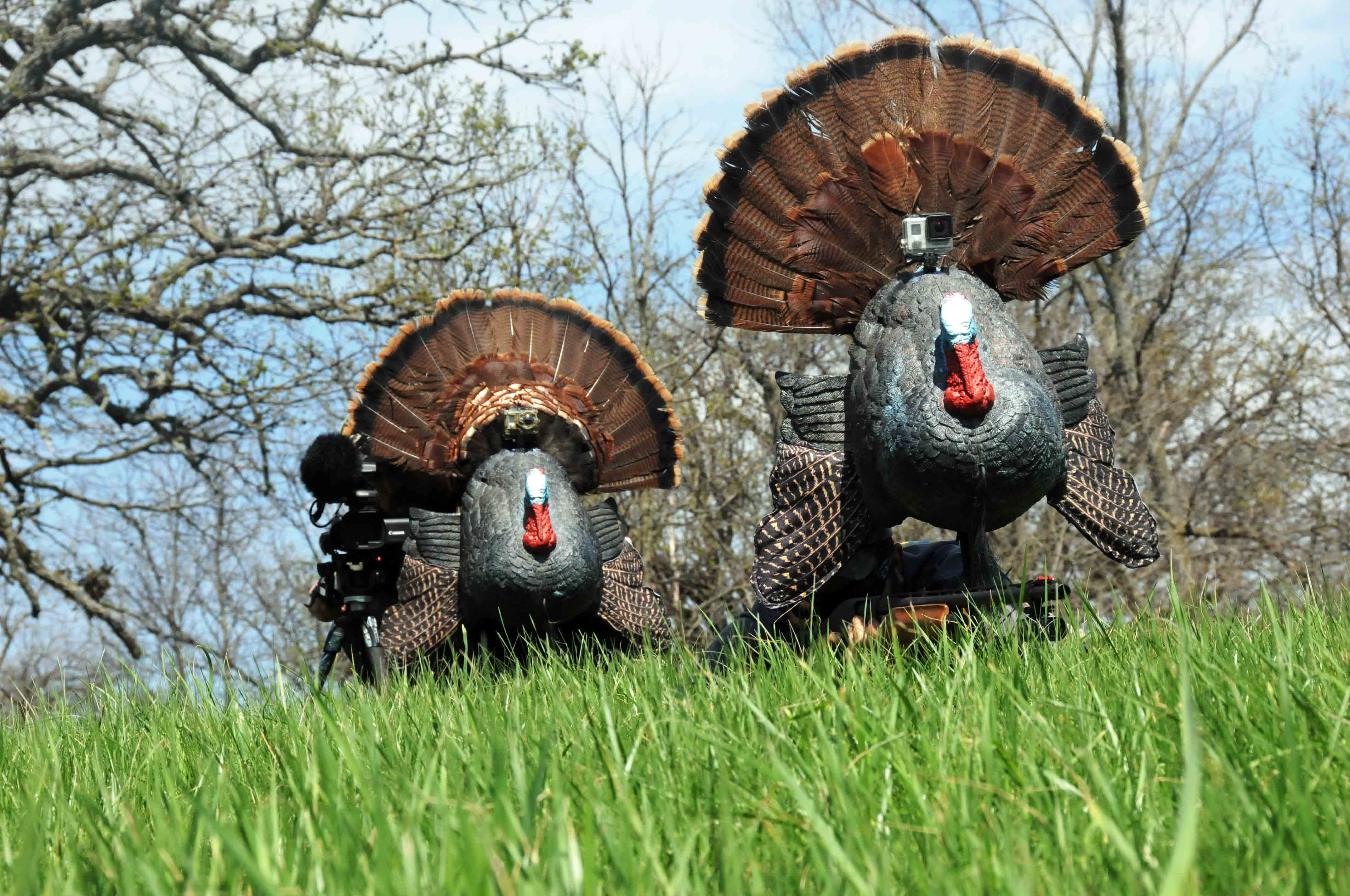 All About Turkey Reaping | Turkey Hunting | Realtree