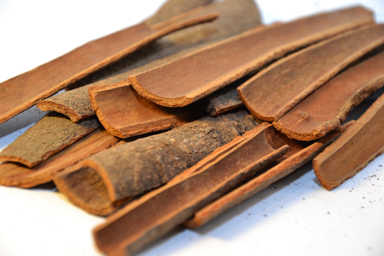 Pieces of cinnamon bark photo