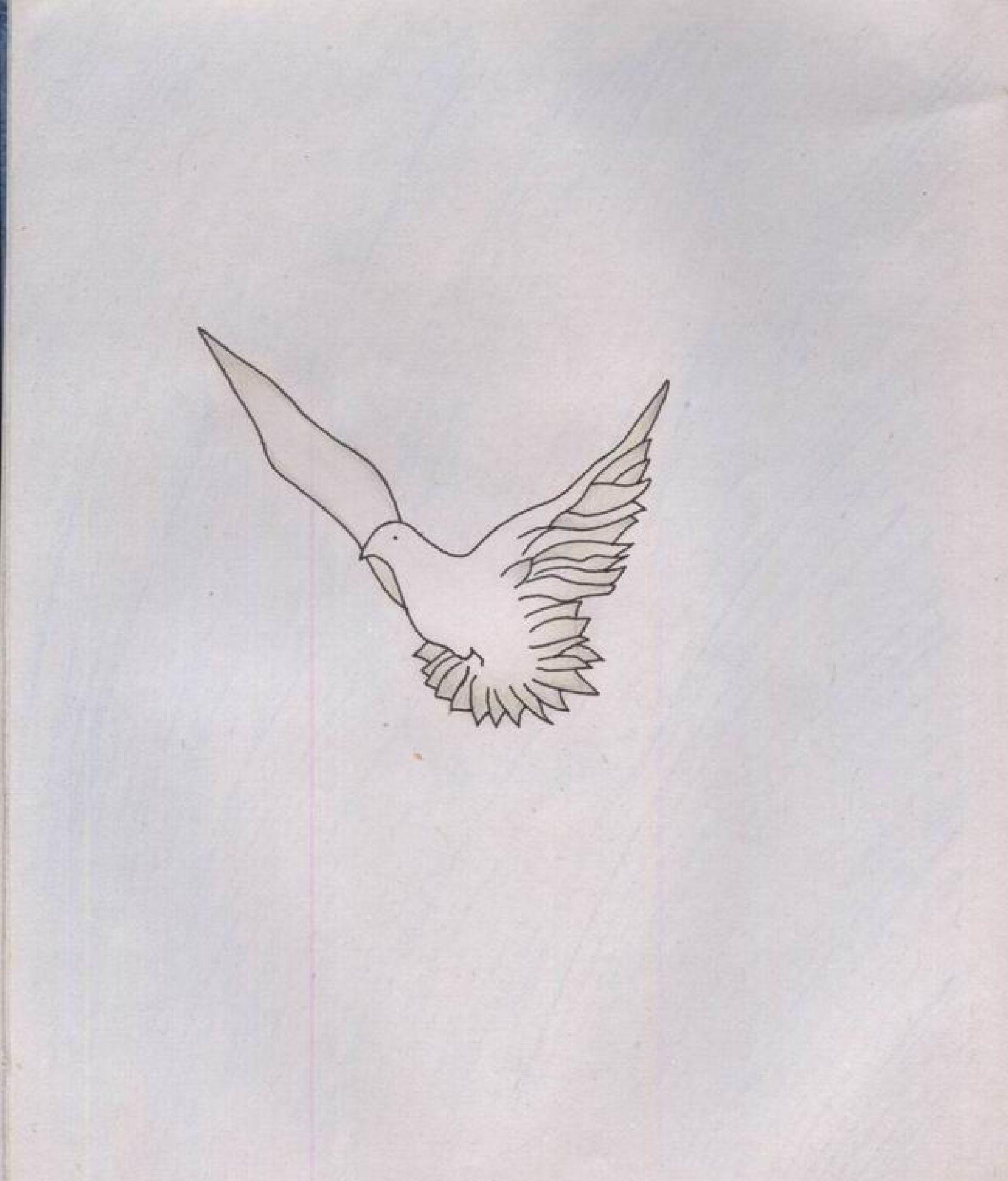 Pigeon drawing, Artwork, Bird, Drawing, Fly, HQ Photo