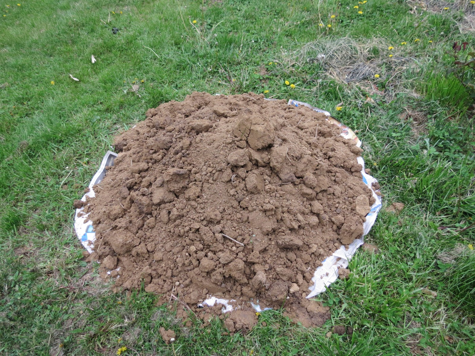 My Freezer is Full: A pile of dirt!