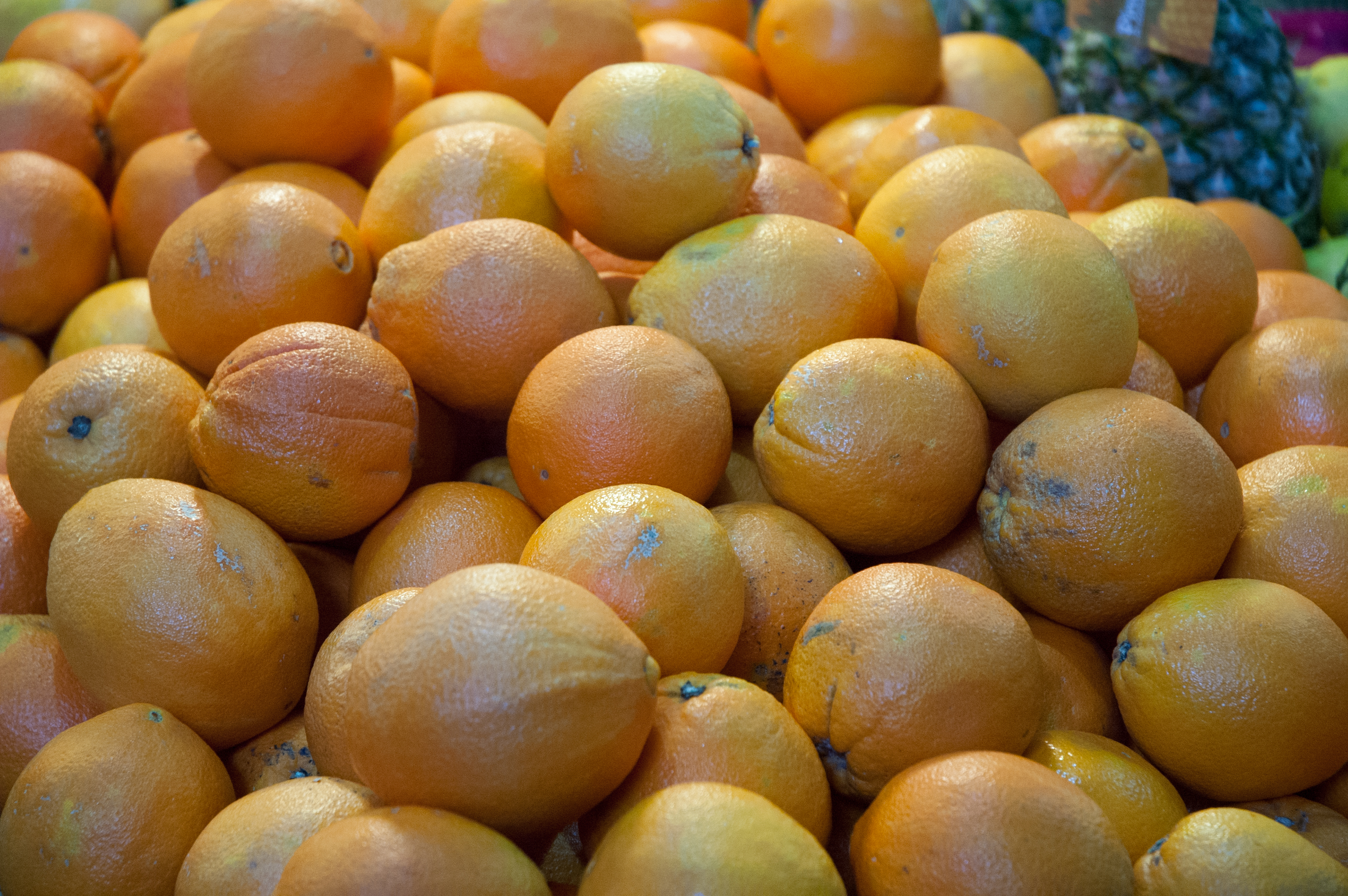 Pile of oranges   Free Stock Photo