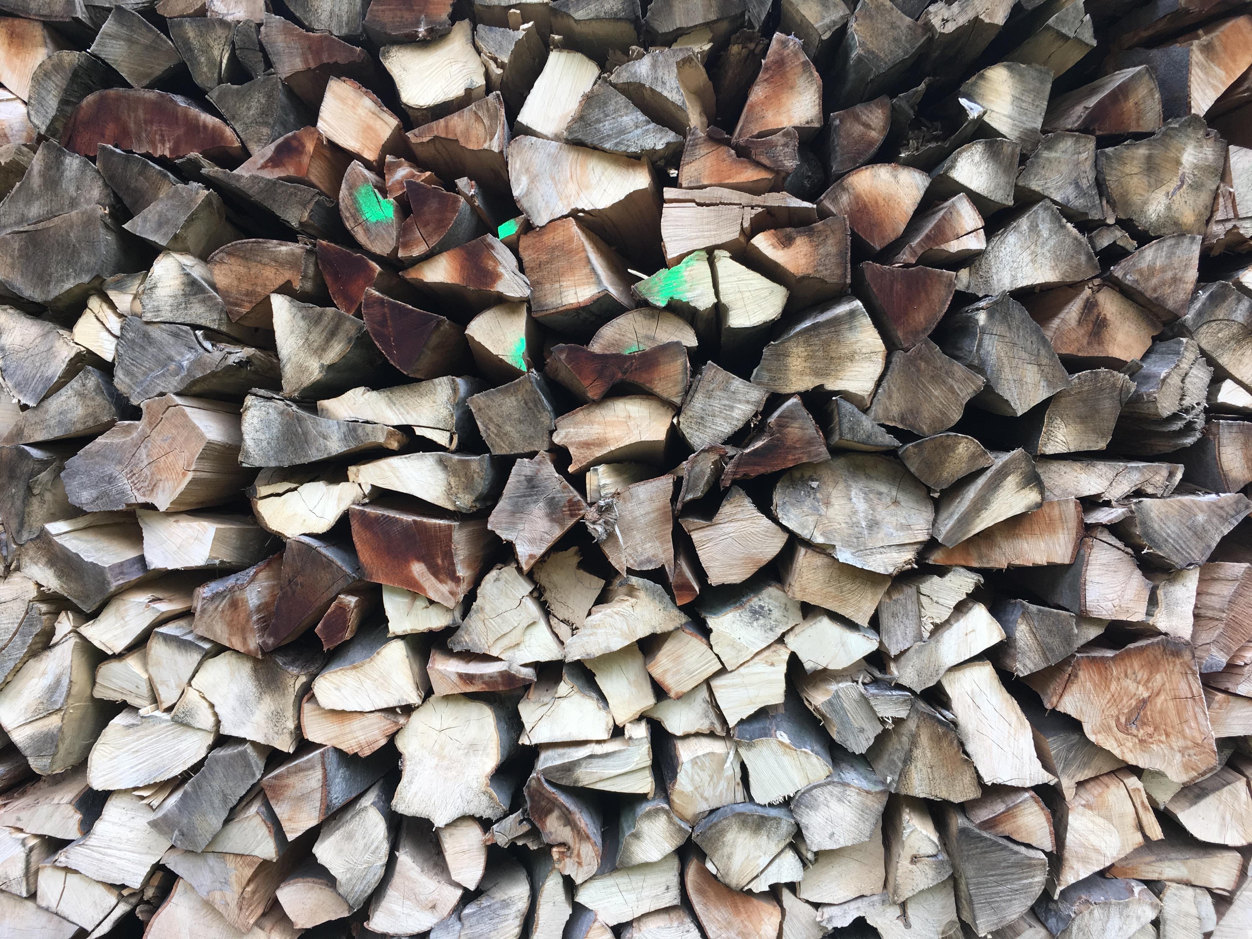 Pile of woods | Free Stock Photo