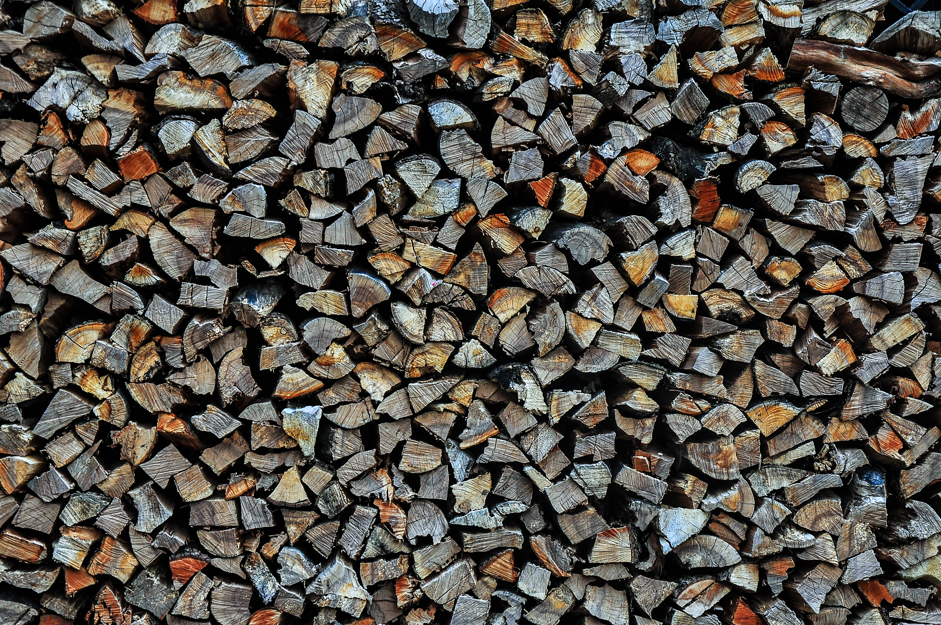 Pile Of woods, Wood, Pile, Logs, Bunch, HQ Photo