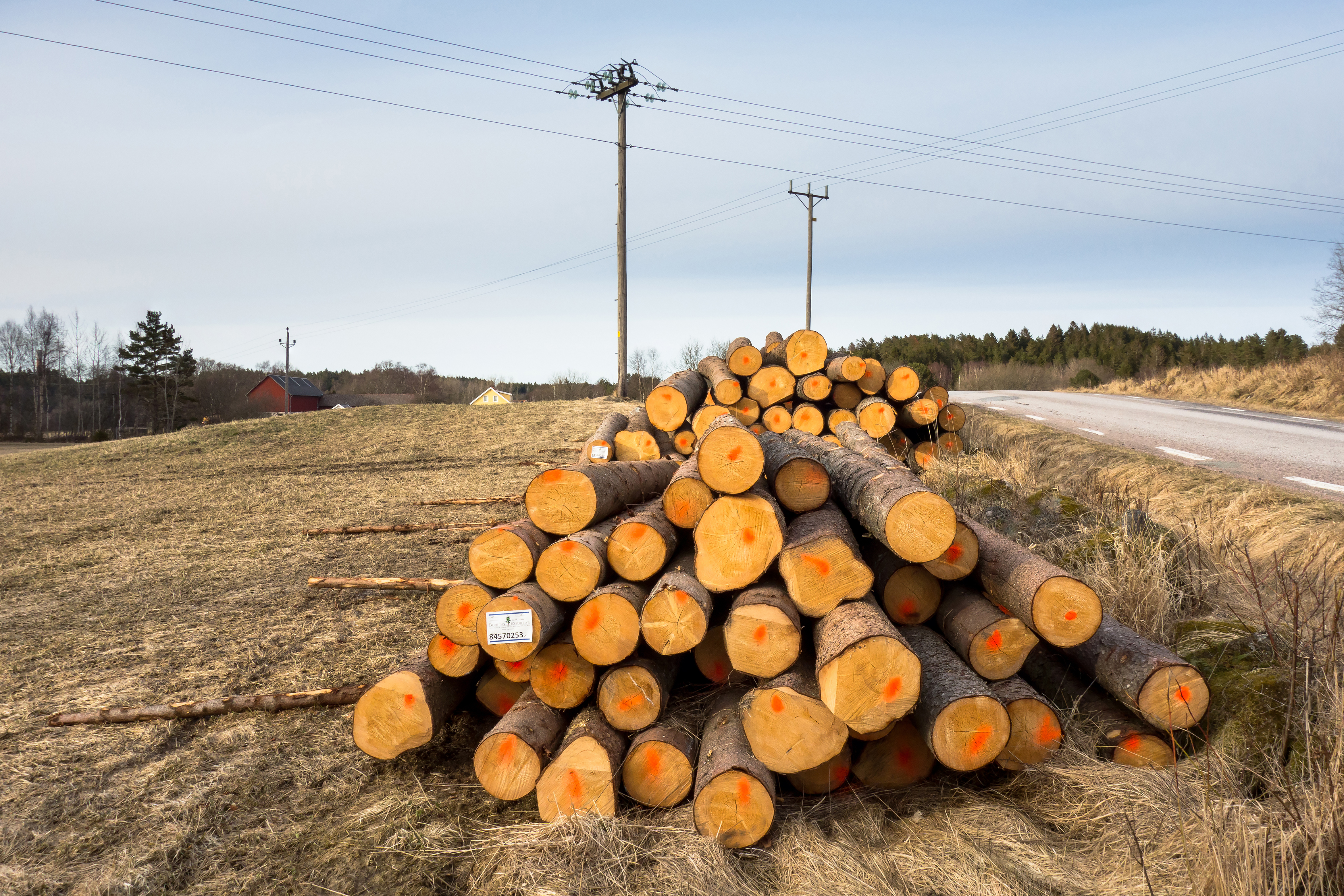 Piles of logs beside a road 2, Dry, Electricity, Grass, Logs, HQ Photo