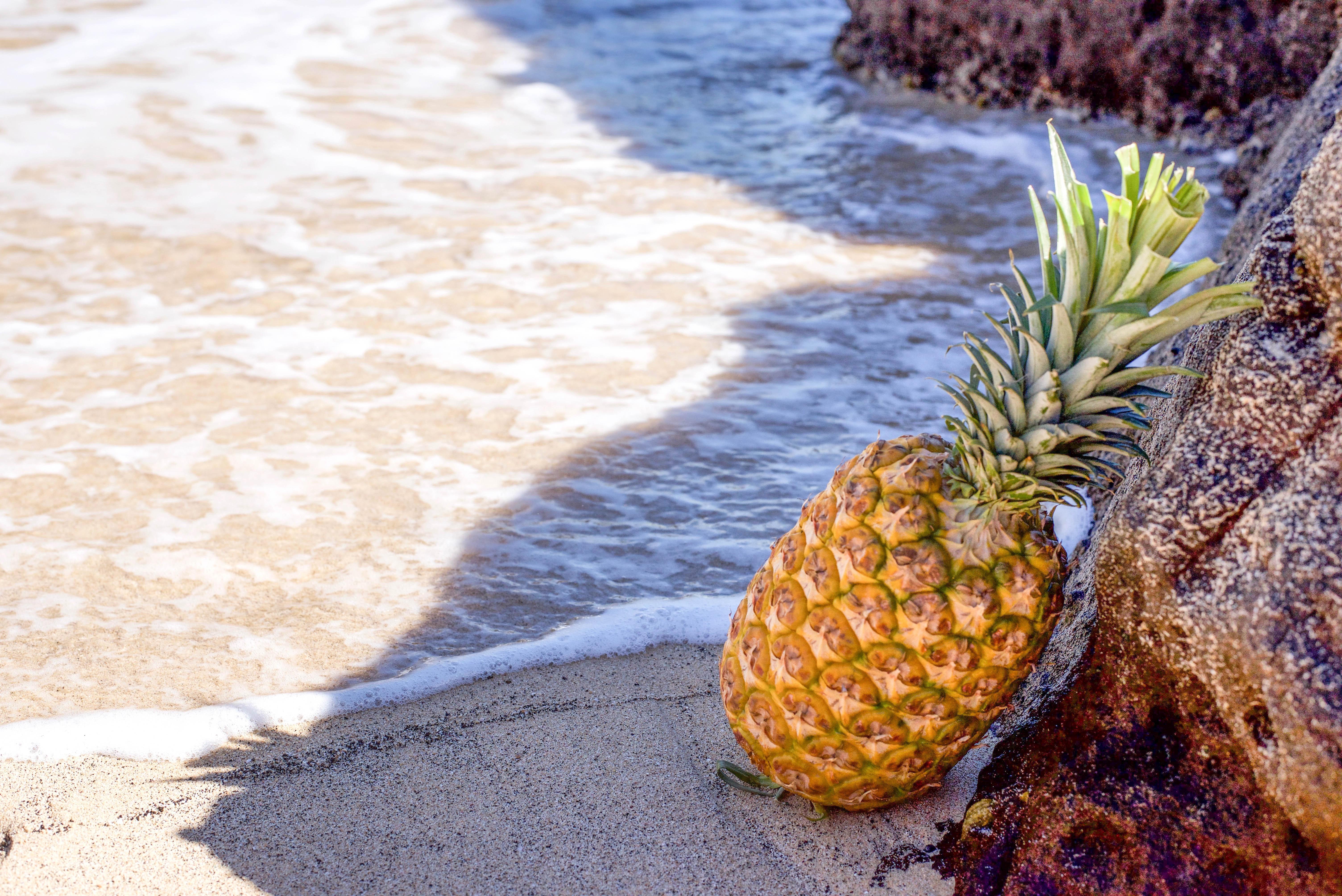 Pineapple in seashore leaning on brown rock photo