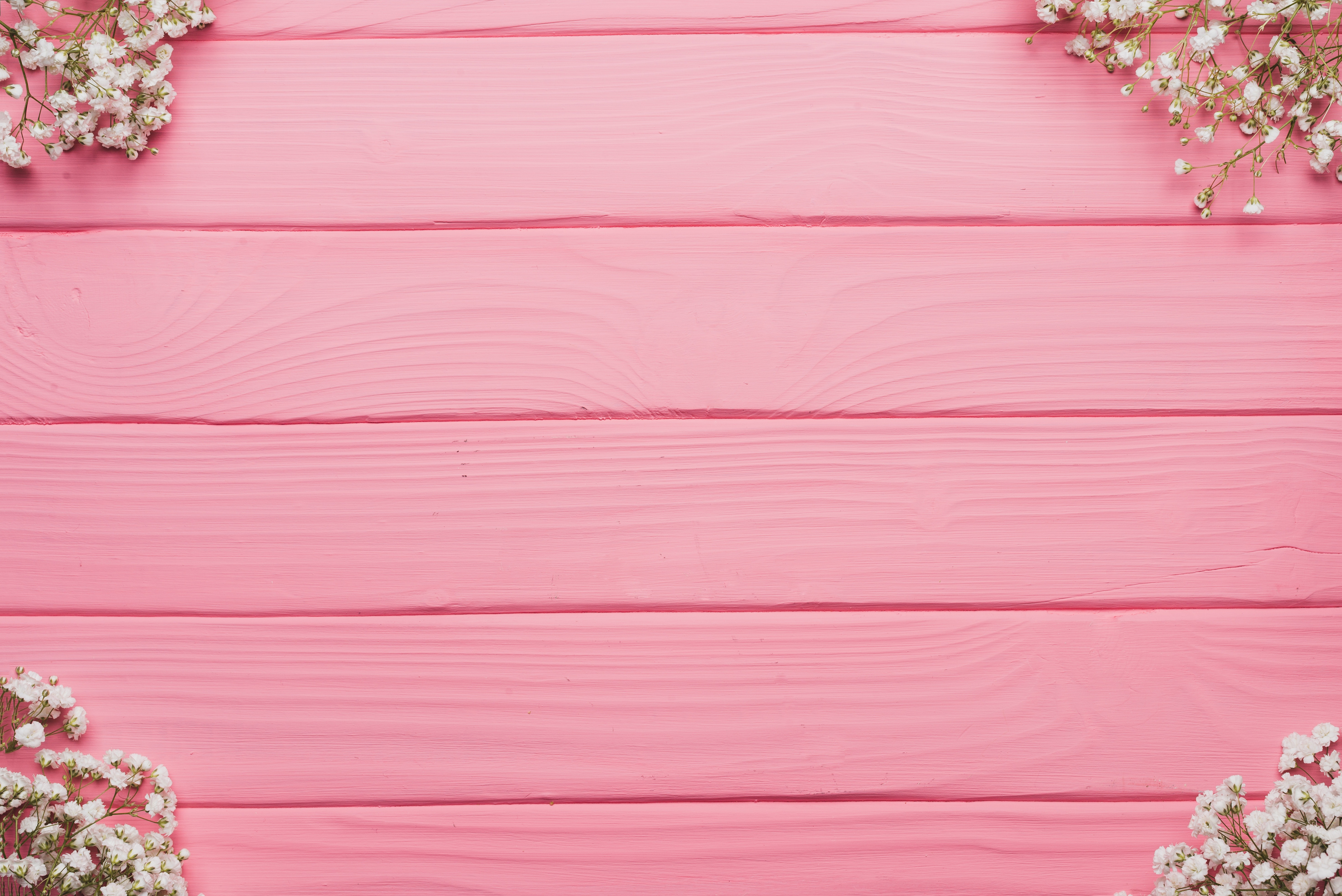 1000+ Amazing Pink Background Photos · Pexels · Free Stock Photos