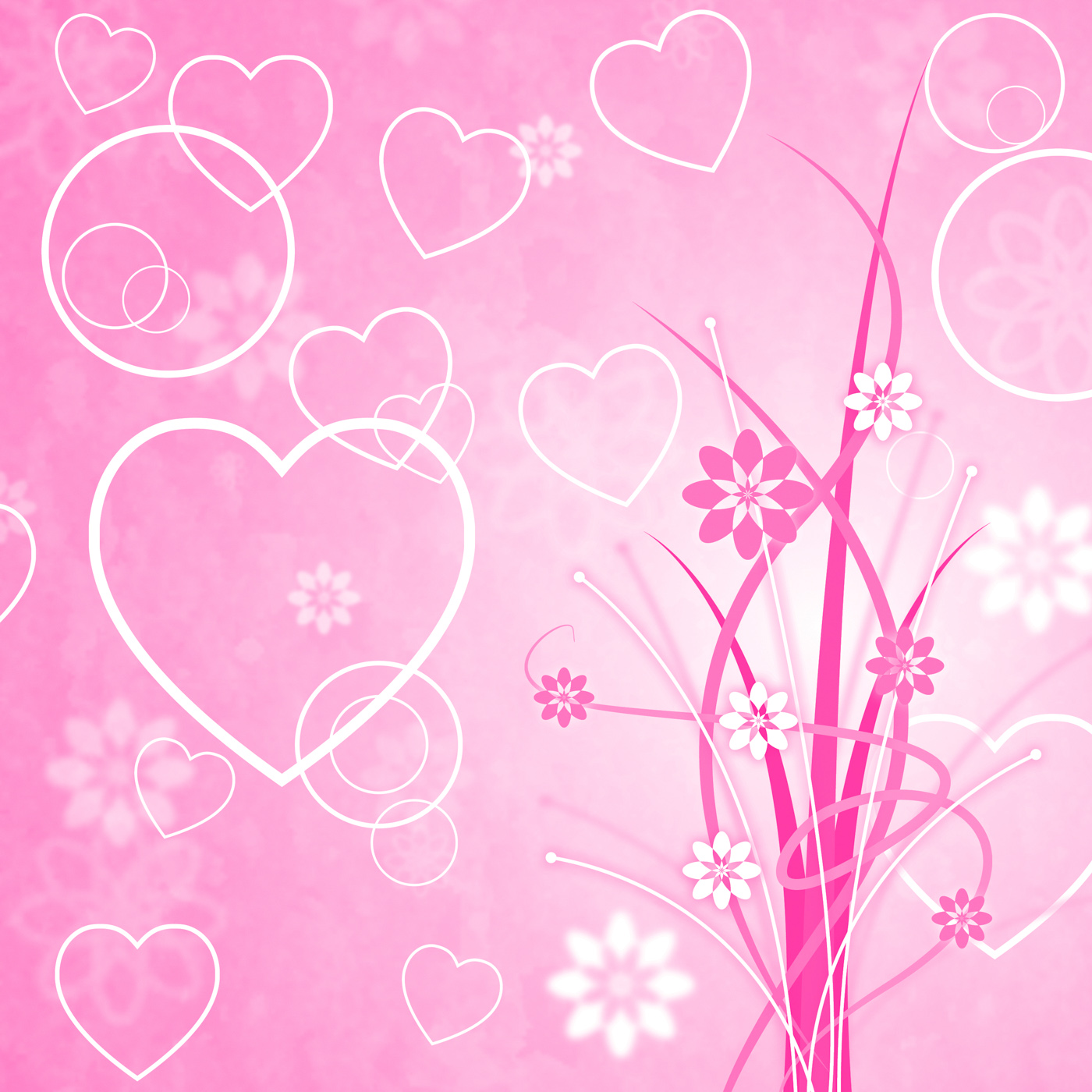 Pink background means valentines day and abstract photo