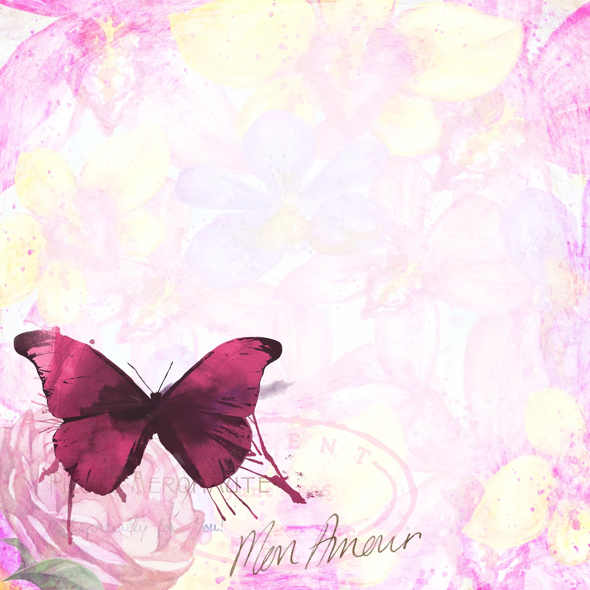 Pink Butterfly, Butterfly, Design, Fly, Insect, HQ Photo