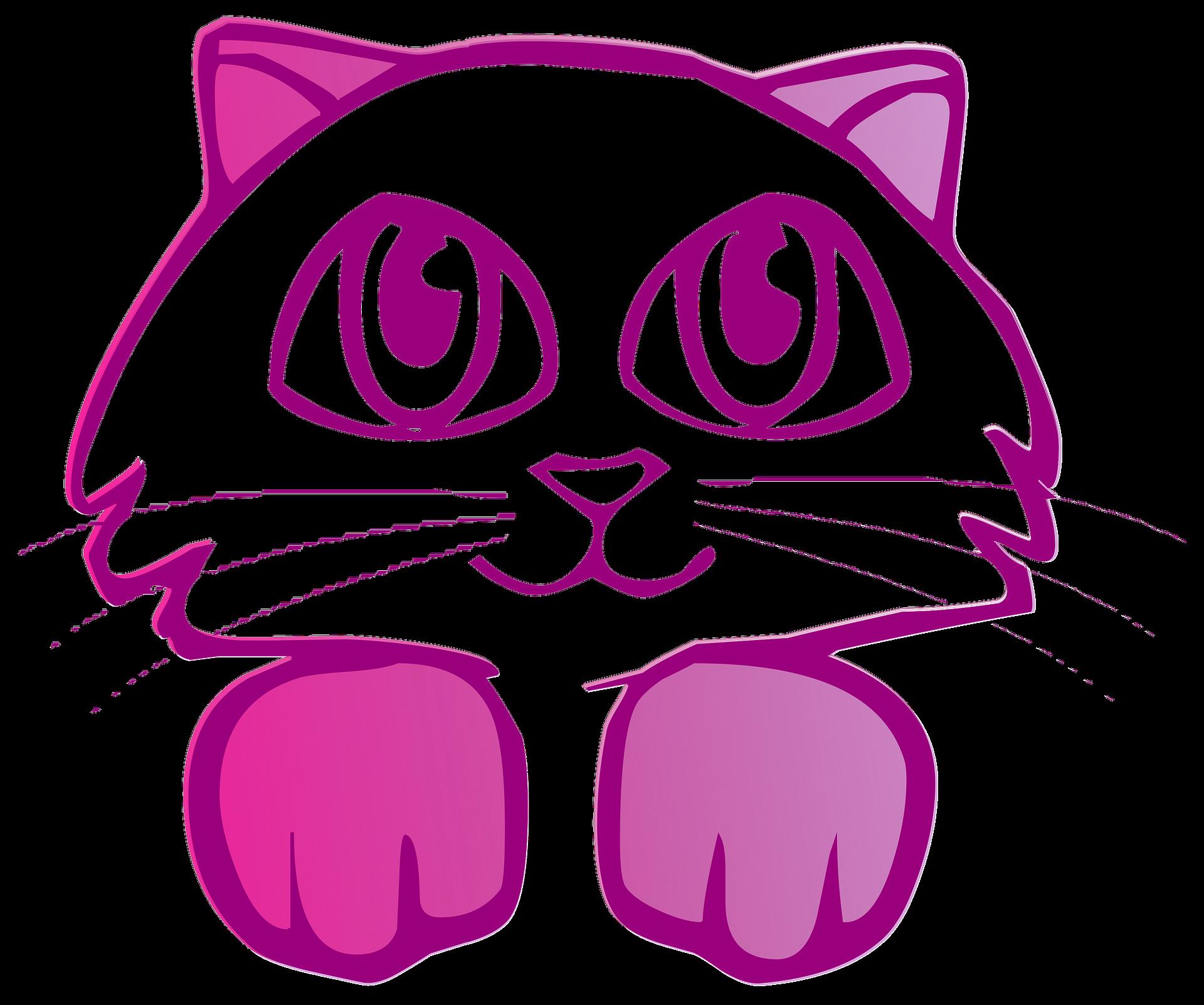 Pink cat photo