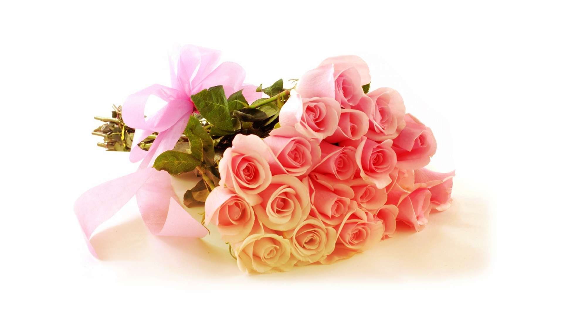 20 Pink Roses Bunch | TajGift.com – Send Flowers & Cakes to India