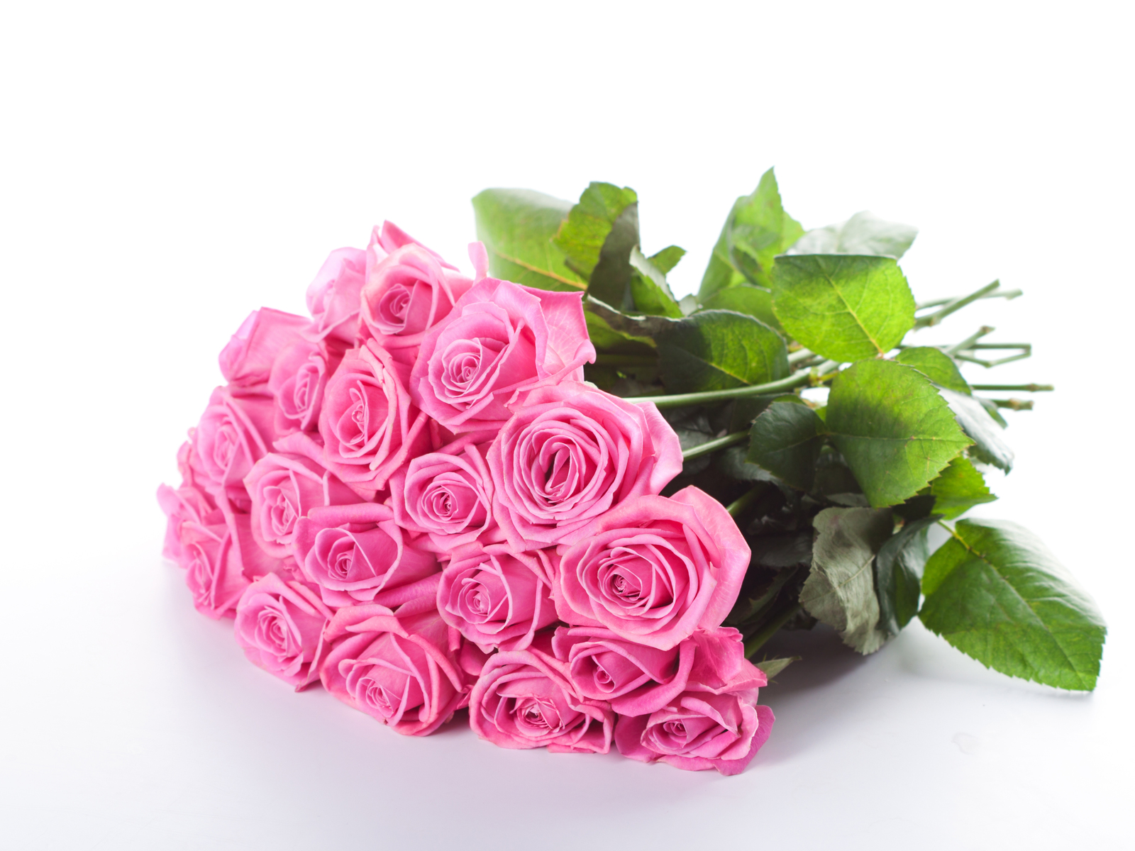 Free Photo Pink Flower Bouquet Still Life Roses Sugar Free