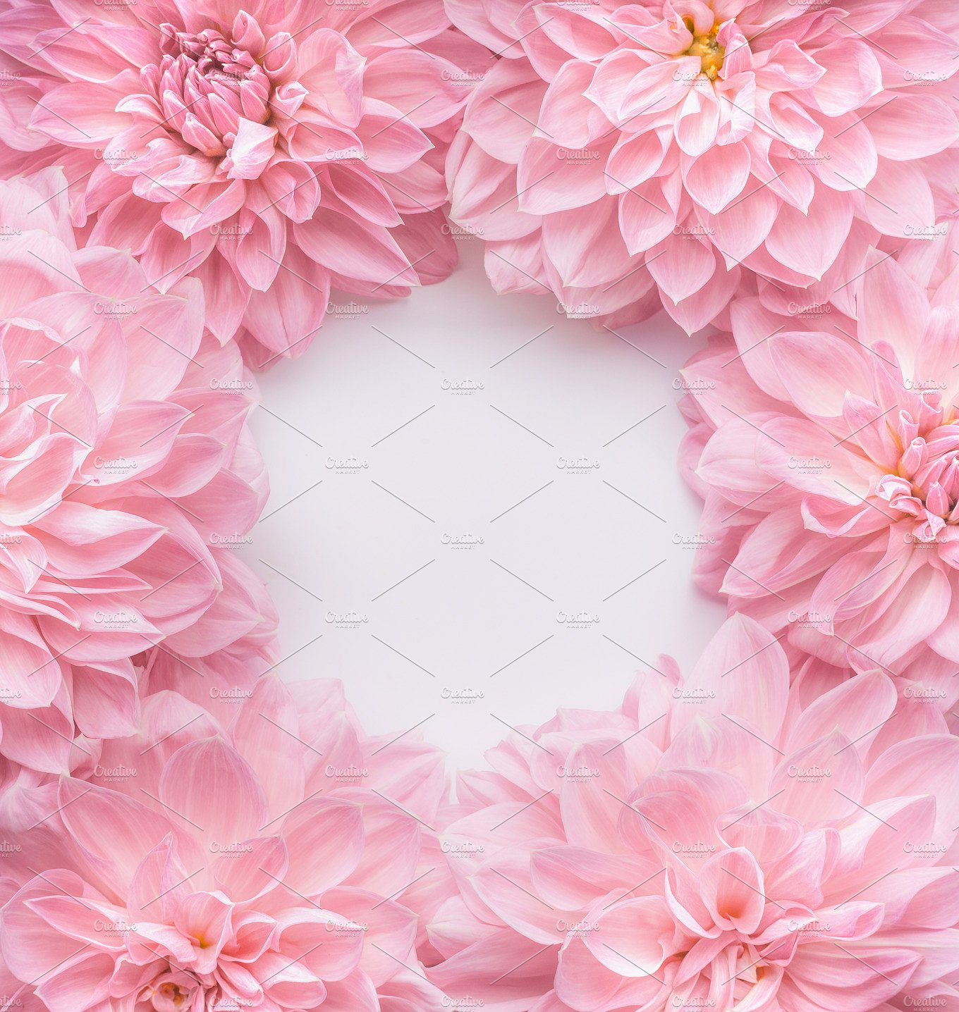Free photo Pink flowers , Pink, Plant, Soft , Free Download