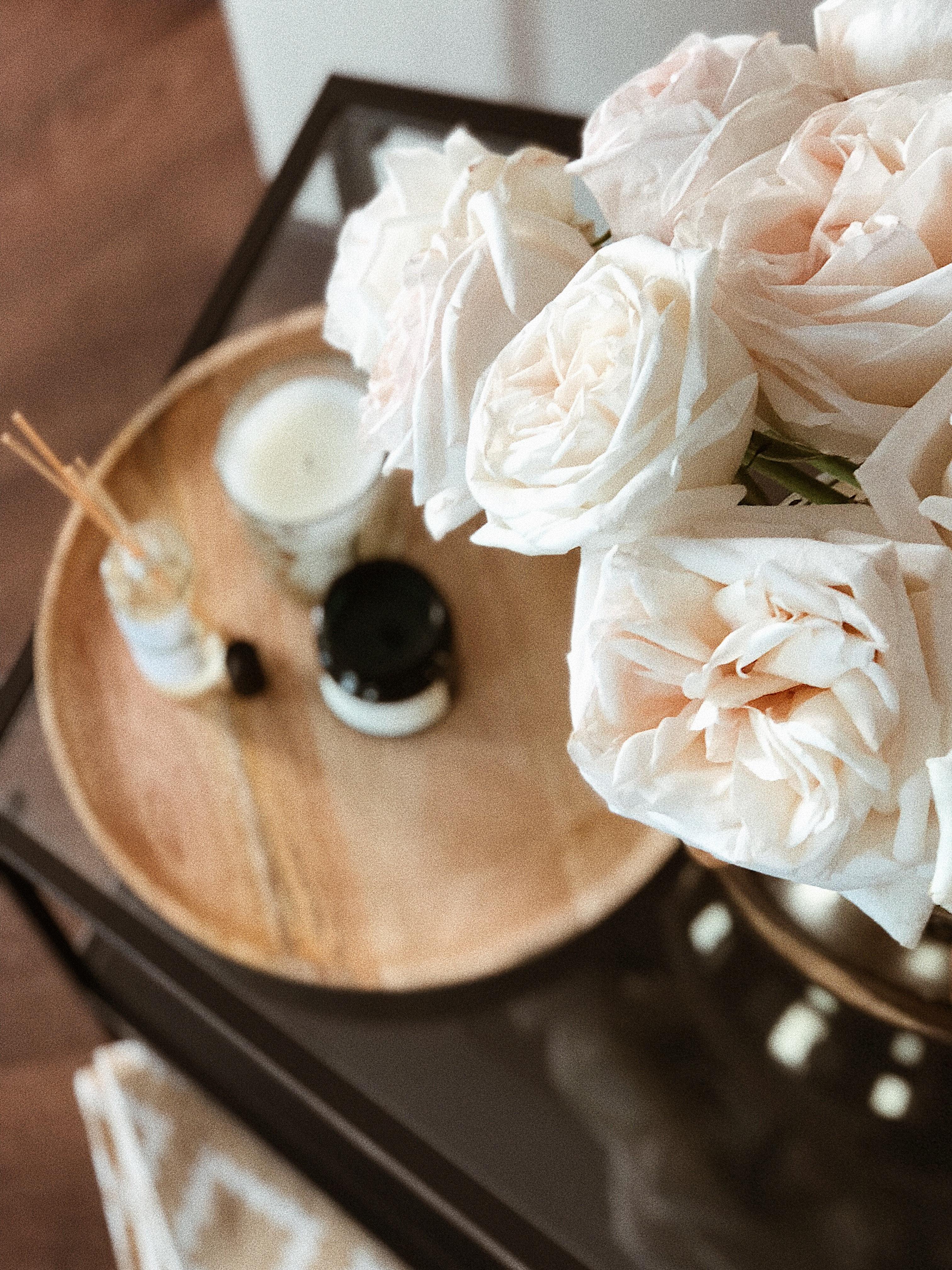 Pink Rose, Celebration, Roses, Wood, White flowers, HQ Photo