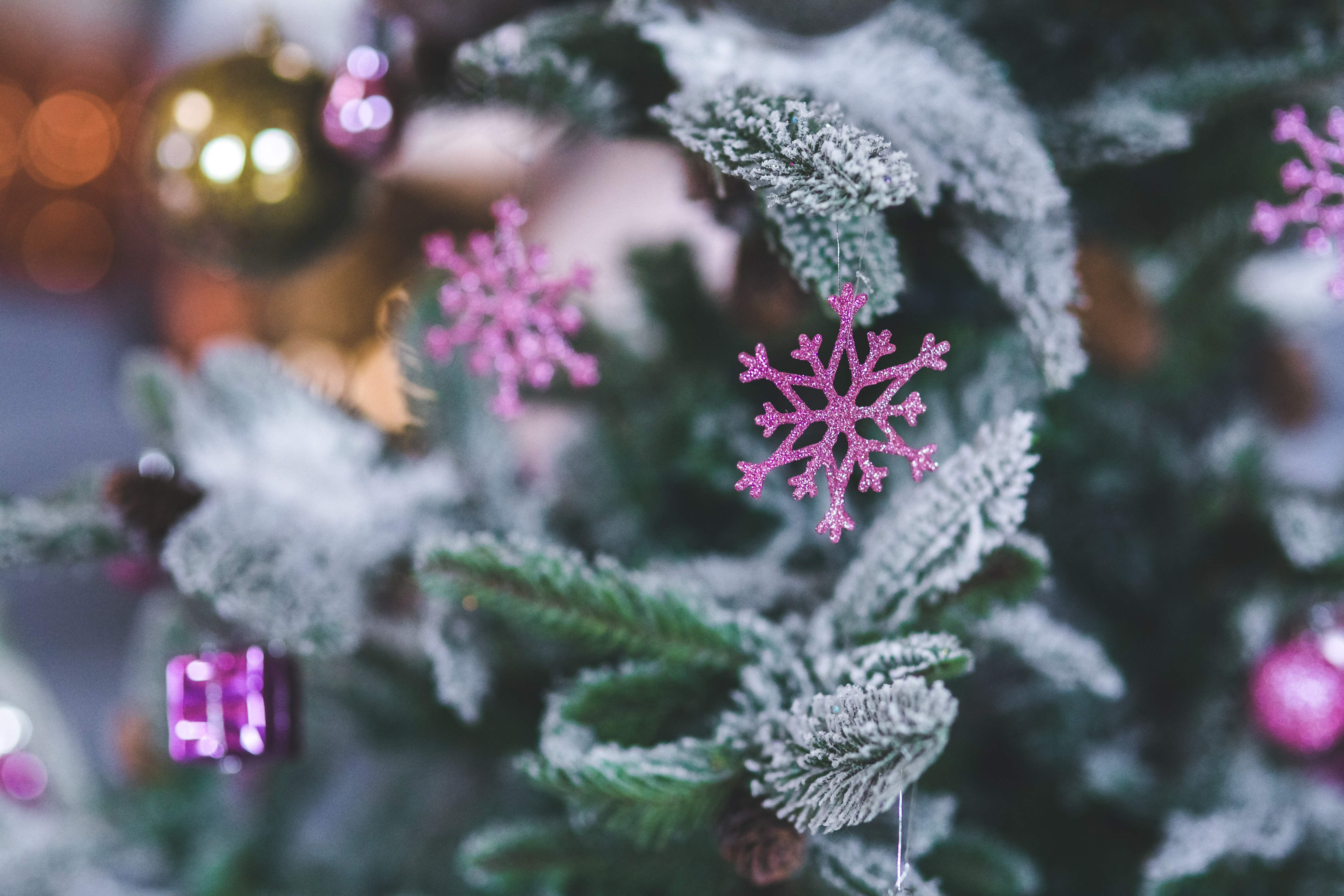 Pink Snowflake. Christmas Tree Decoration, Branch, New year, Winter, Tree, HQ Photo