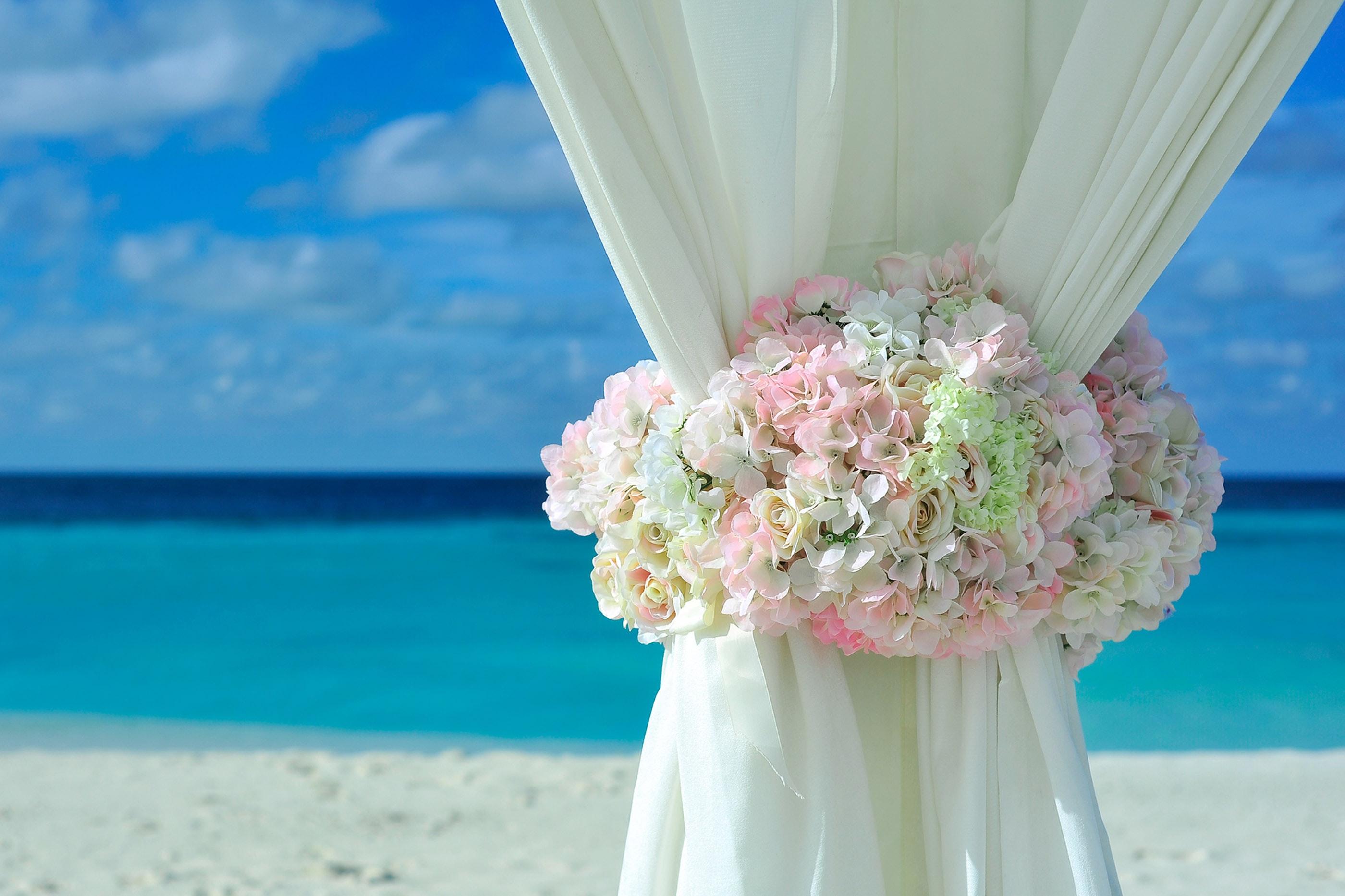 Pink white petal flower on white curtain near white sand beach on daytime photo