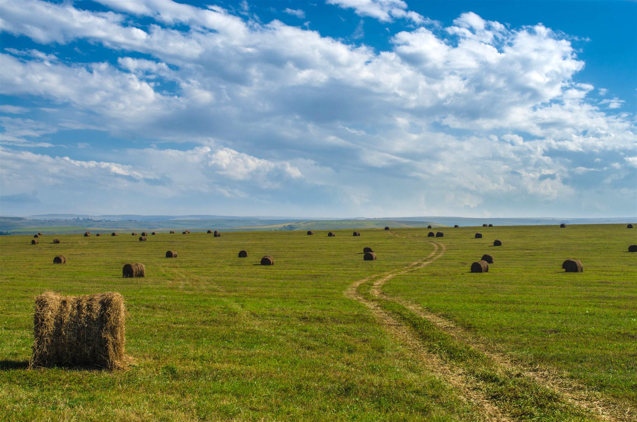 Bales on the plain / 2048 x 1365 / Nature / Photography | MIRIADNA.COM