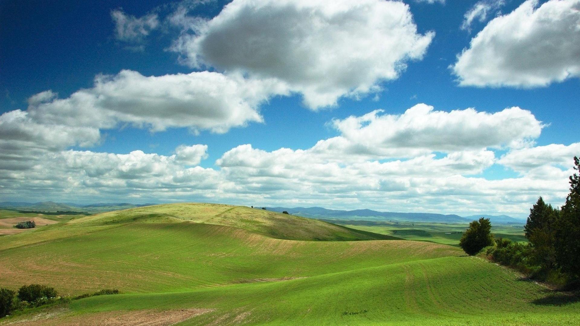 Download Wallpaper 1920x1080 plain, greens, clouds, fields ...
