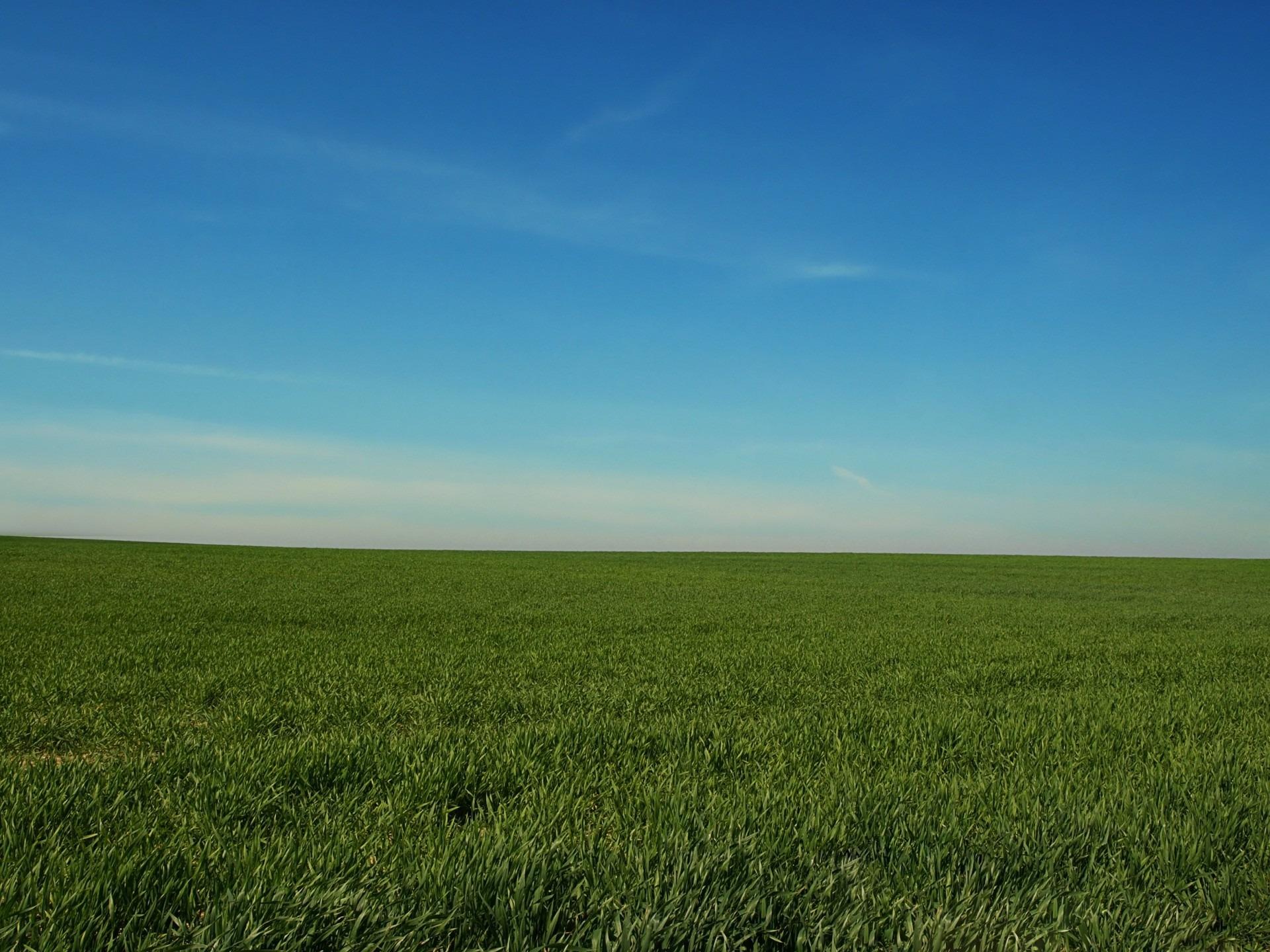 Free Images : landscape, horizon, marsh, cloud, sky, field, lawn ...