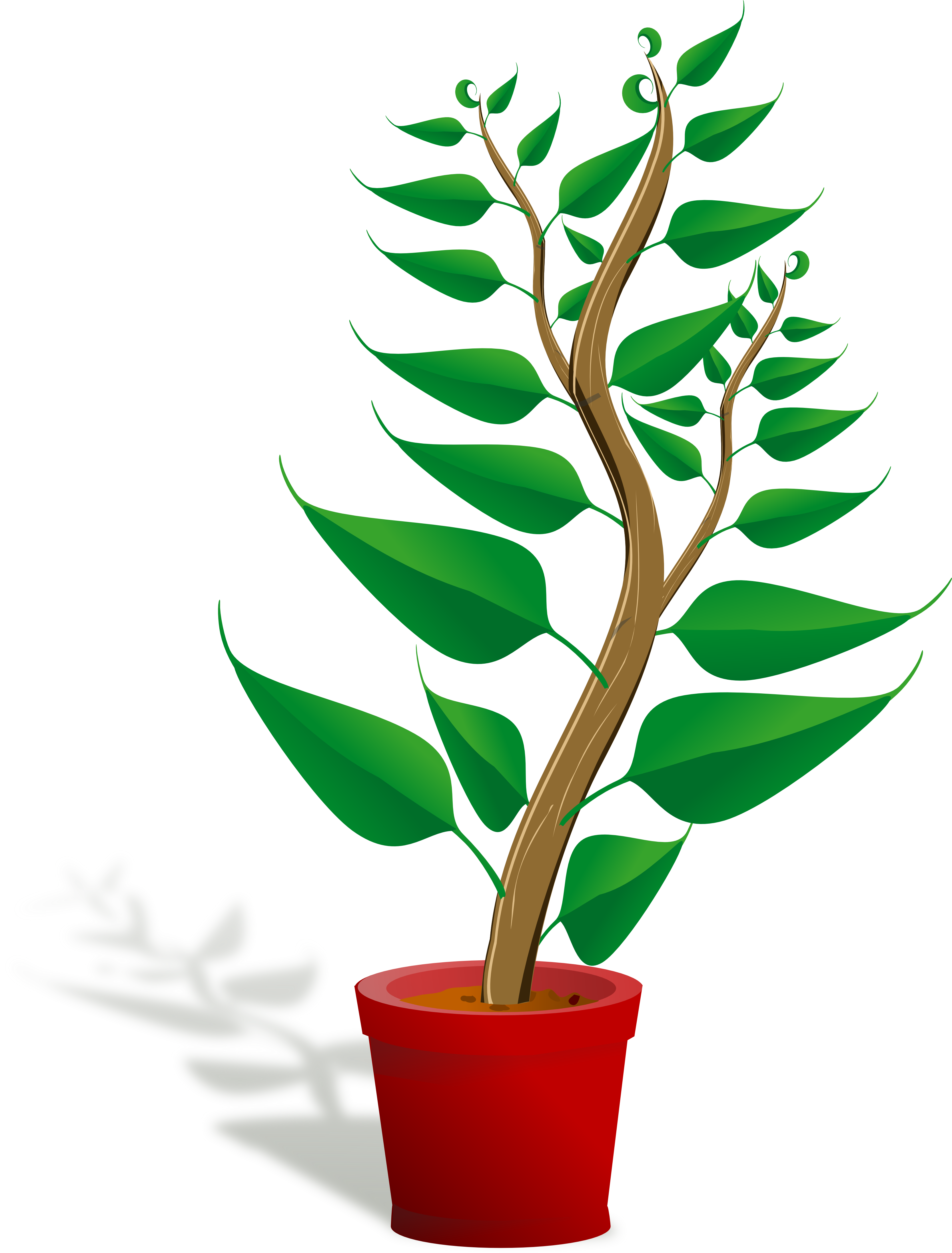 Tall Plant Clipart