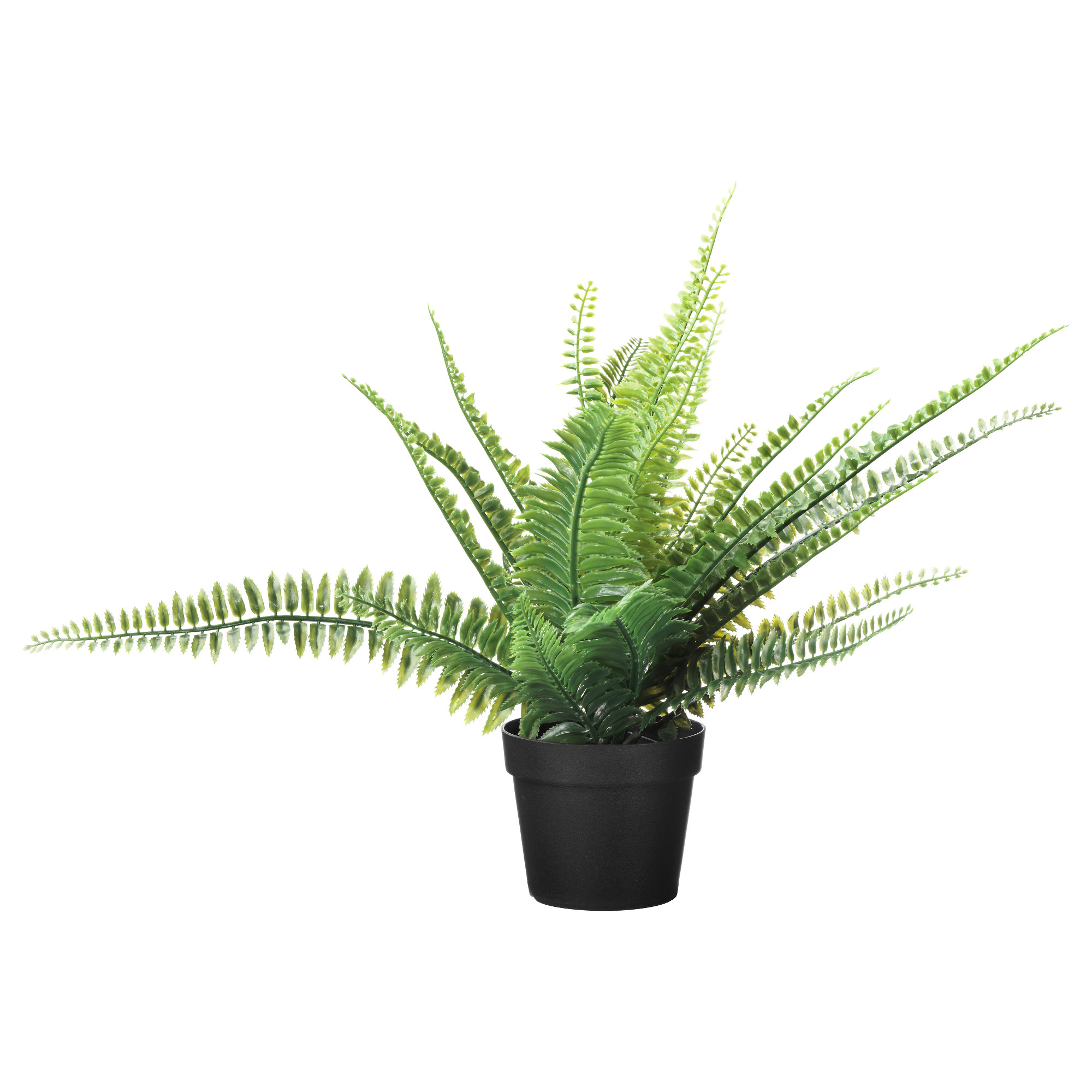FEJKA artificial potted plant, fern in/outdoor, Artificial Plants ...