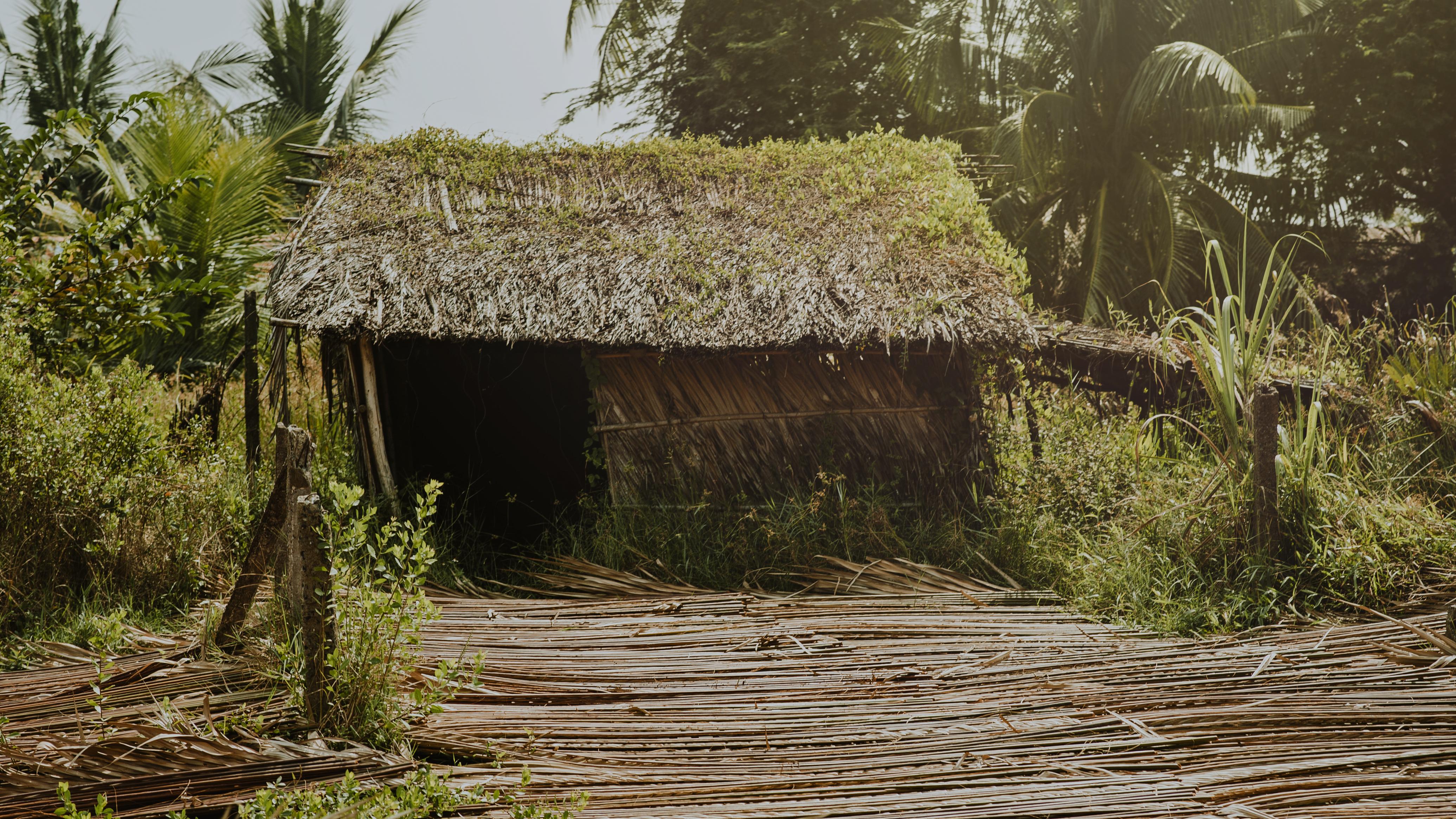 Free Images : daylight, farm, forest, house, hut, landscape ...