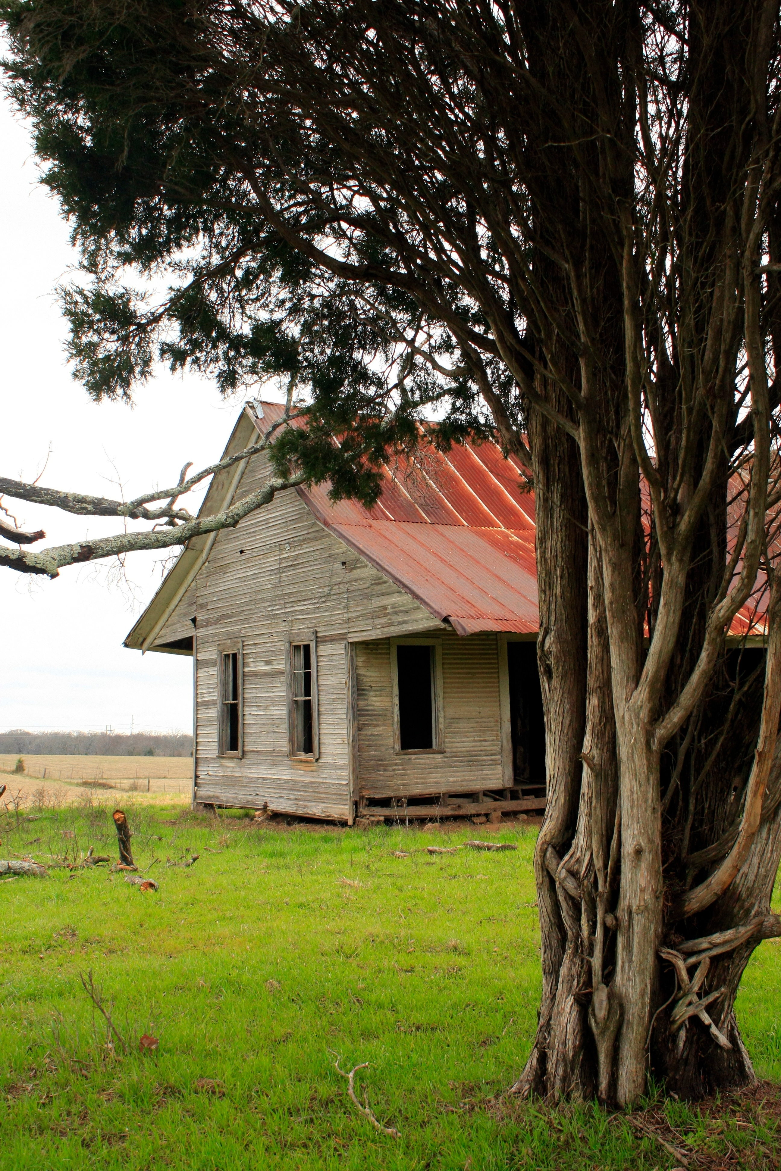 Free Images : tree, wood, farm, house, flower, building, barn, home ...