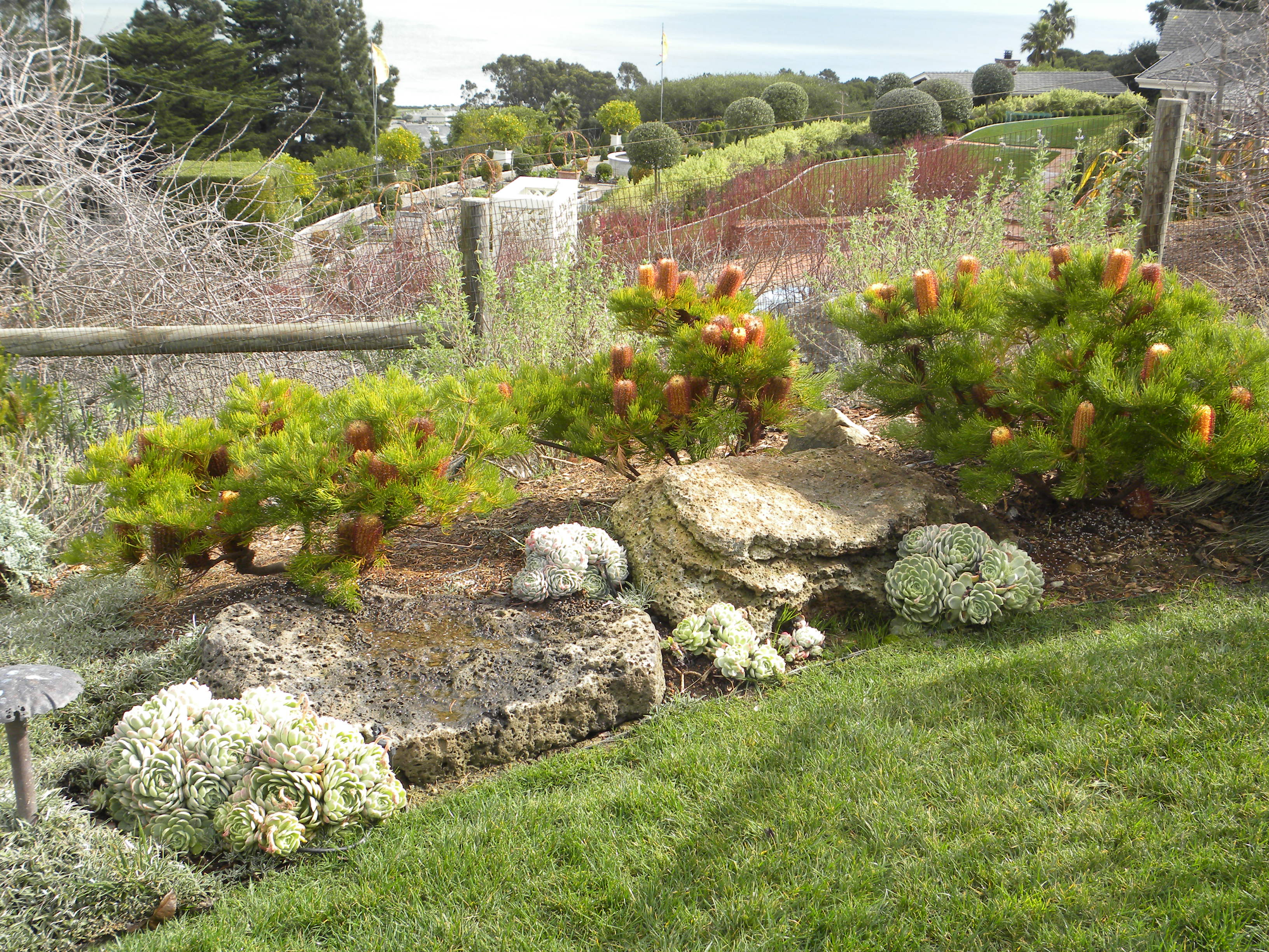 How to choose boulders for any garden | The Human Footprint