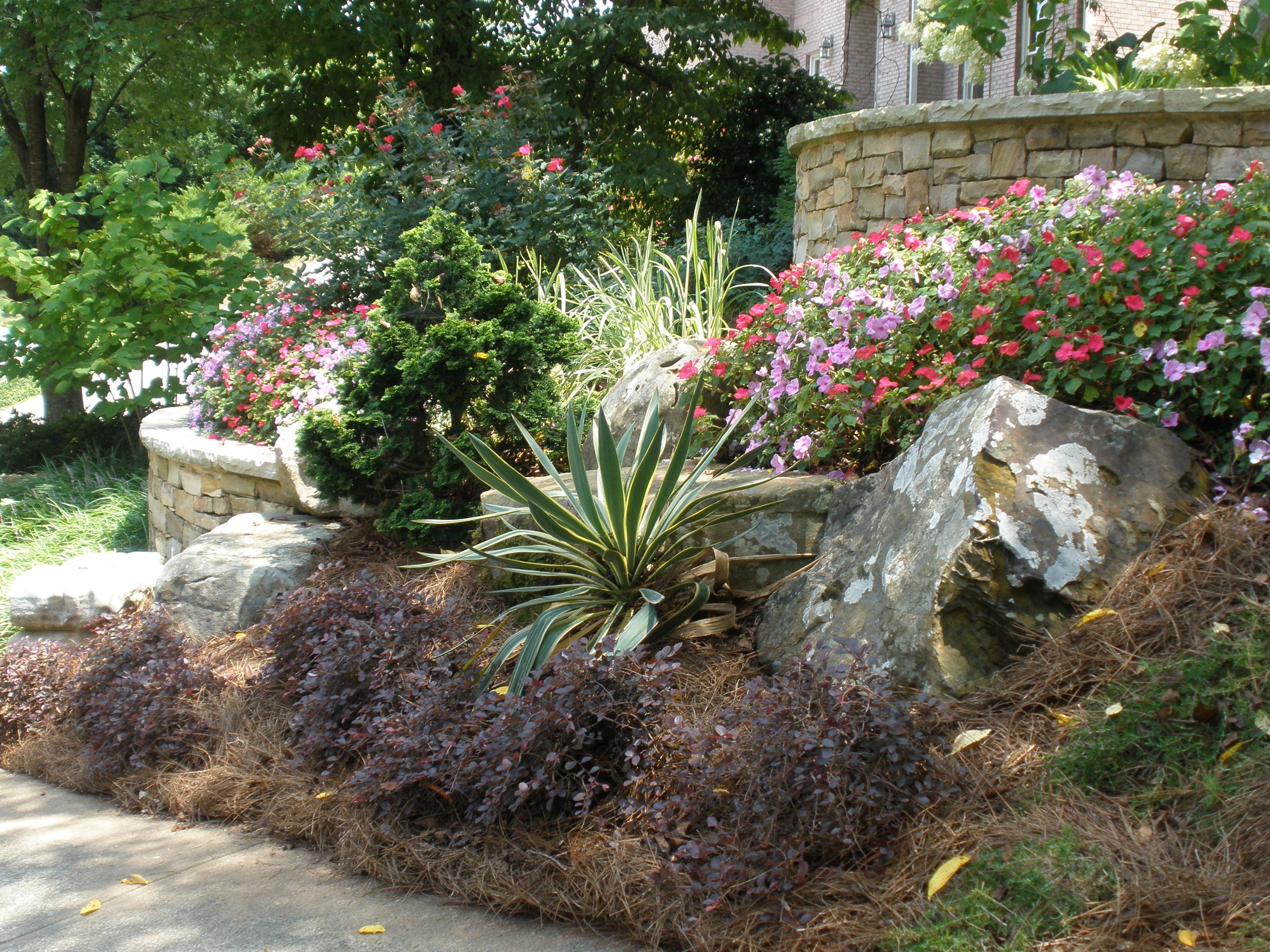 Time to Plant!—Atlanta. | Landscape Architect Blog