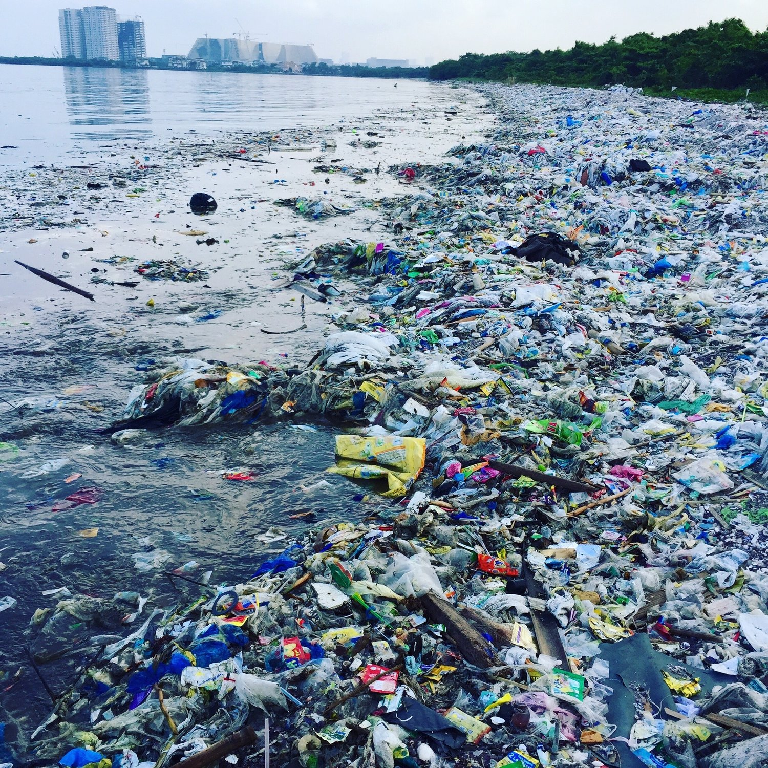 TAKE ACTION — Plastic Pollution Coalition