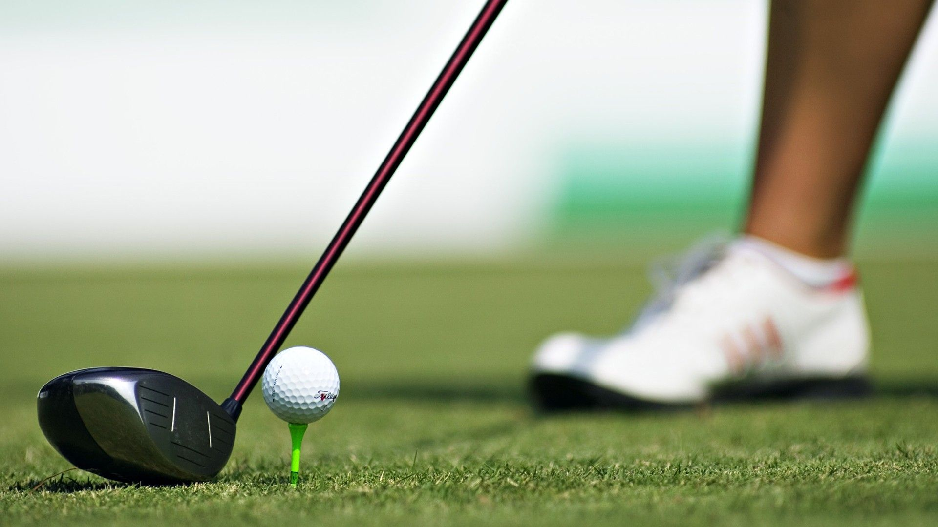 What You Need To Know When Playing Golf | freewillandscience ...