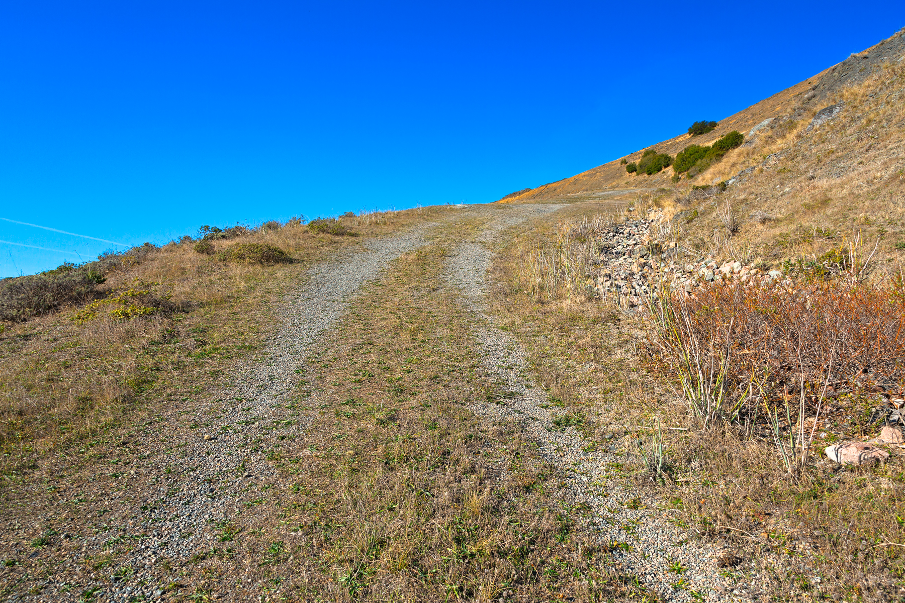 Point reyes winding trail - hdr photo