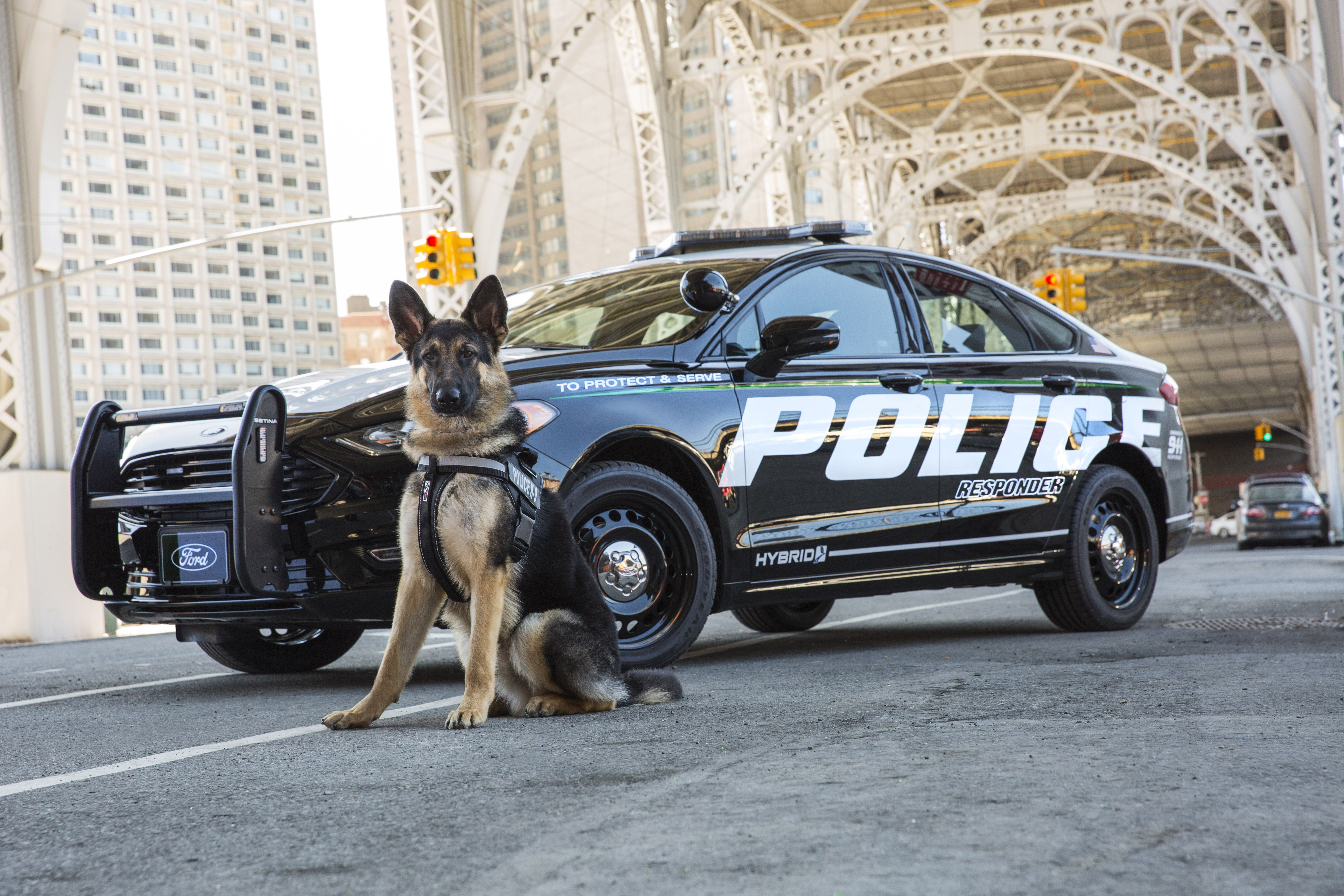 Ford Responder Is First 'Pursuit-Rated' Hybrid Police Car | Fortune