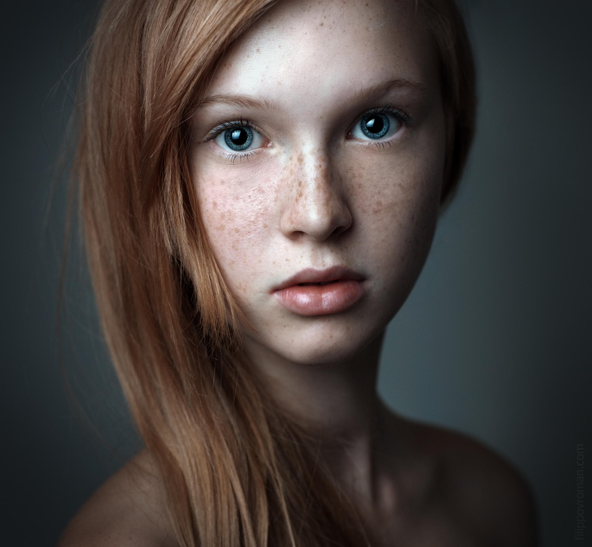 2048x1893px Portrait 250.21 KB #309101