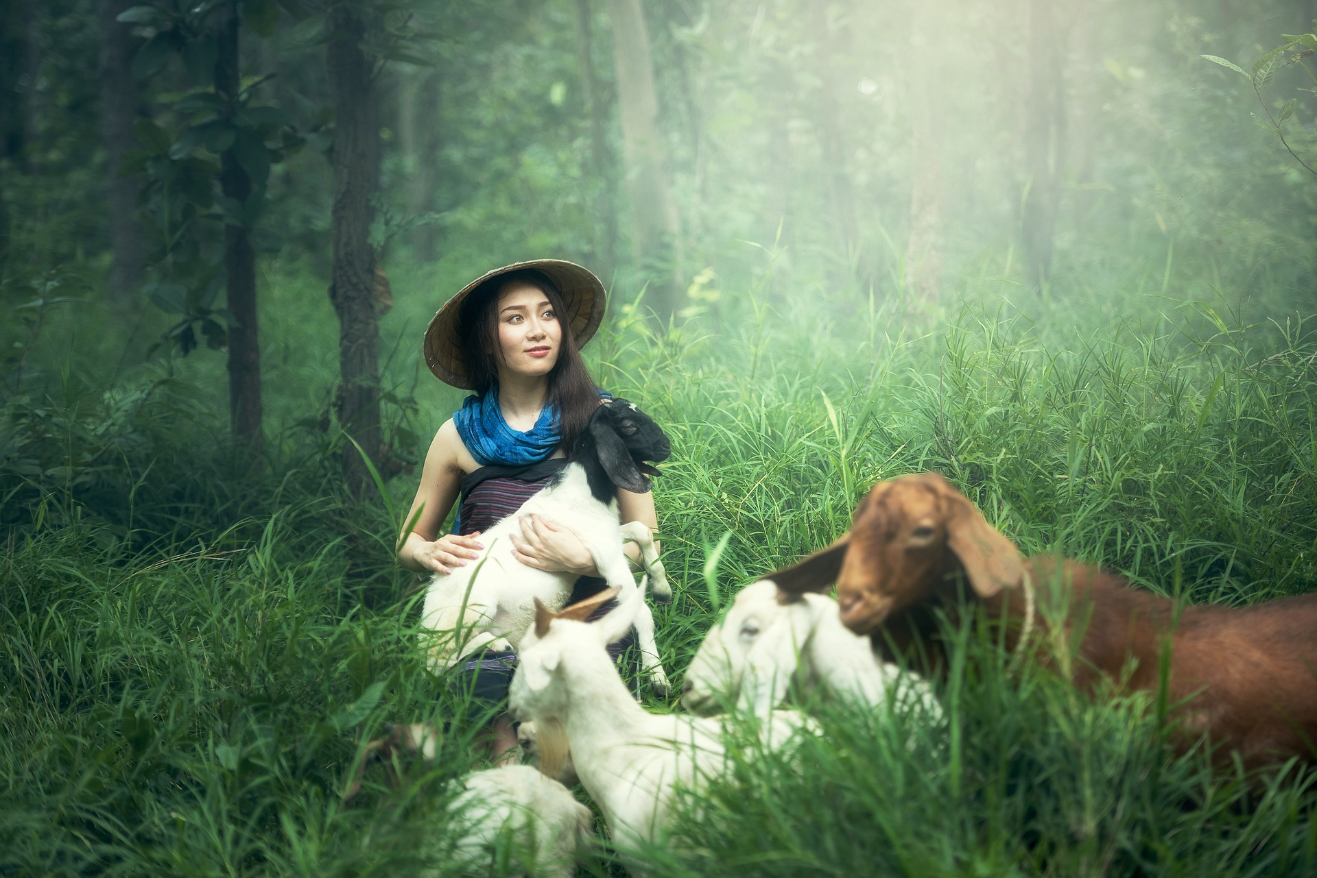 Portrait with the Goats, Animal, Girl, Goat, Green, HQ Photo