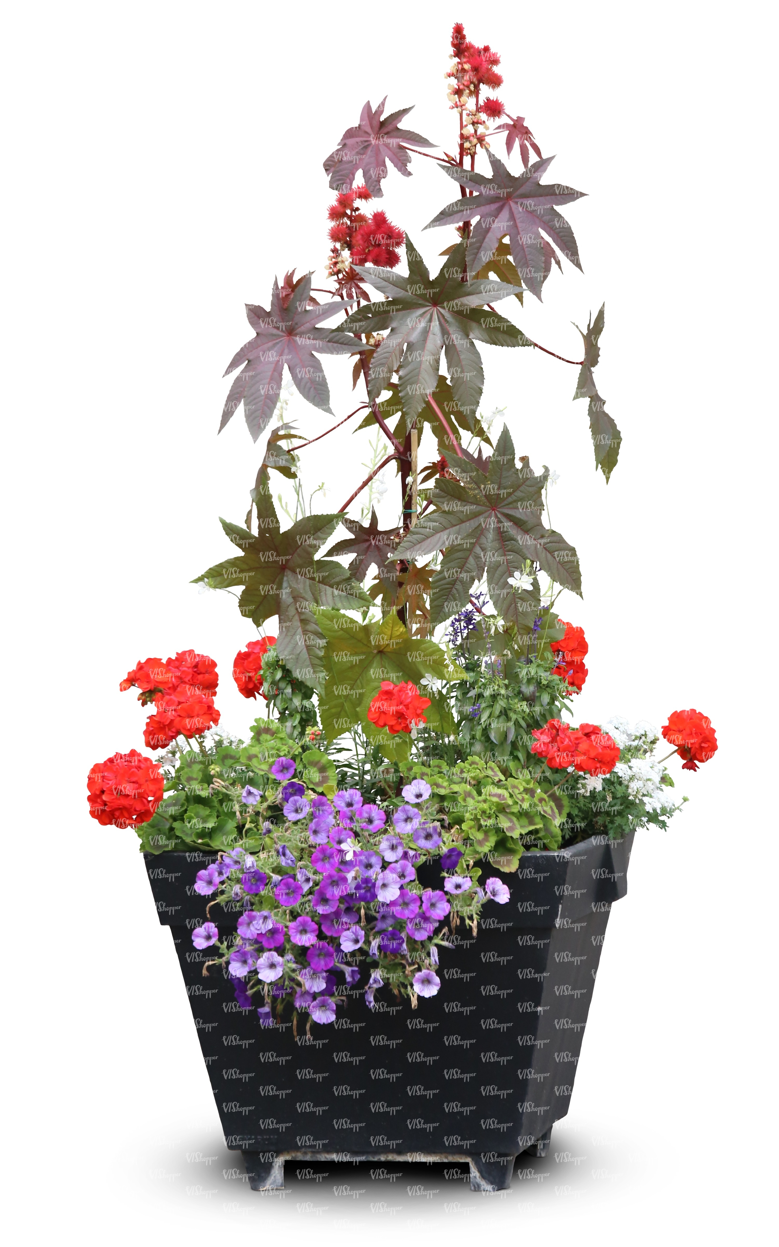 combination of flowers in a black pot - cut out trees and plants ...