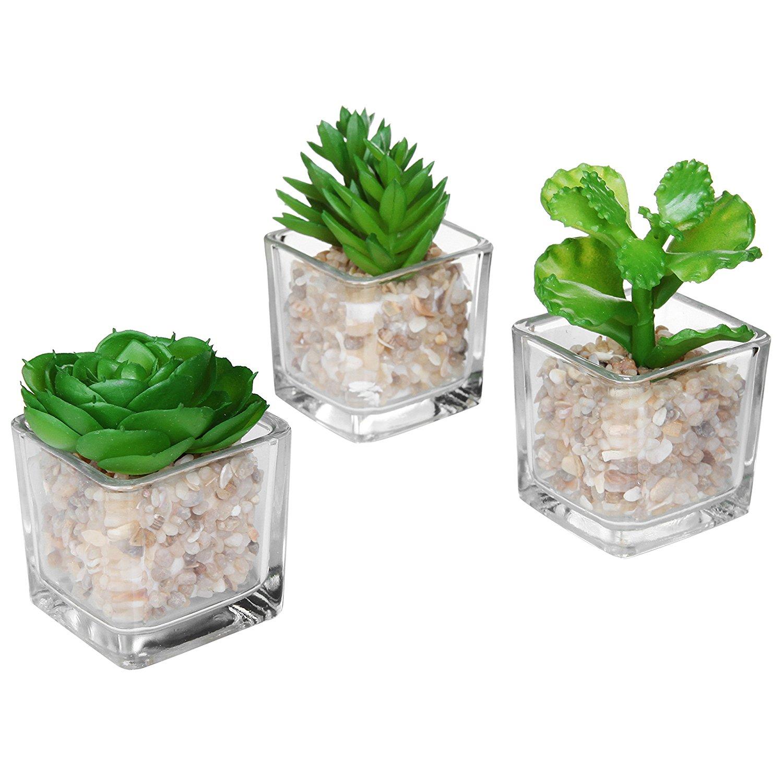 Amazon.com: Modern Clear Glass Planter Pot Faux Plants / Mini Potted ...
