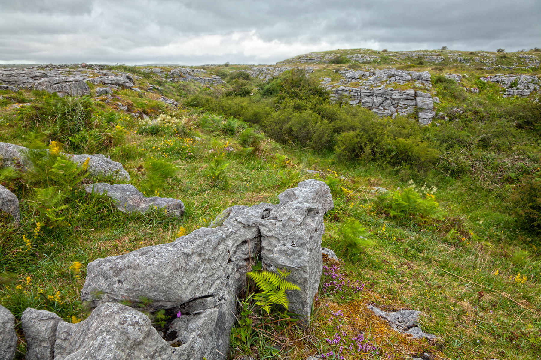 Poulnabrone landscape - hdr photo
