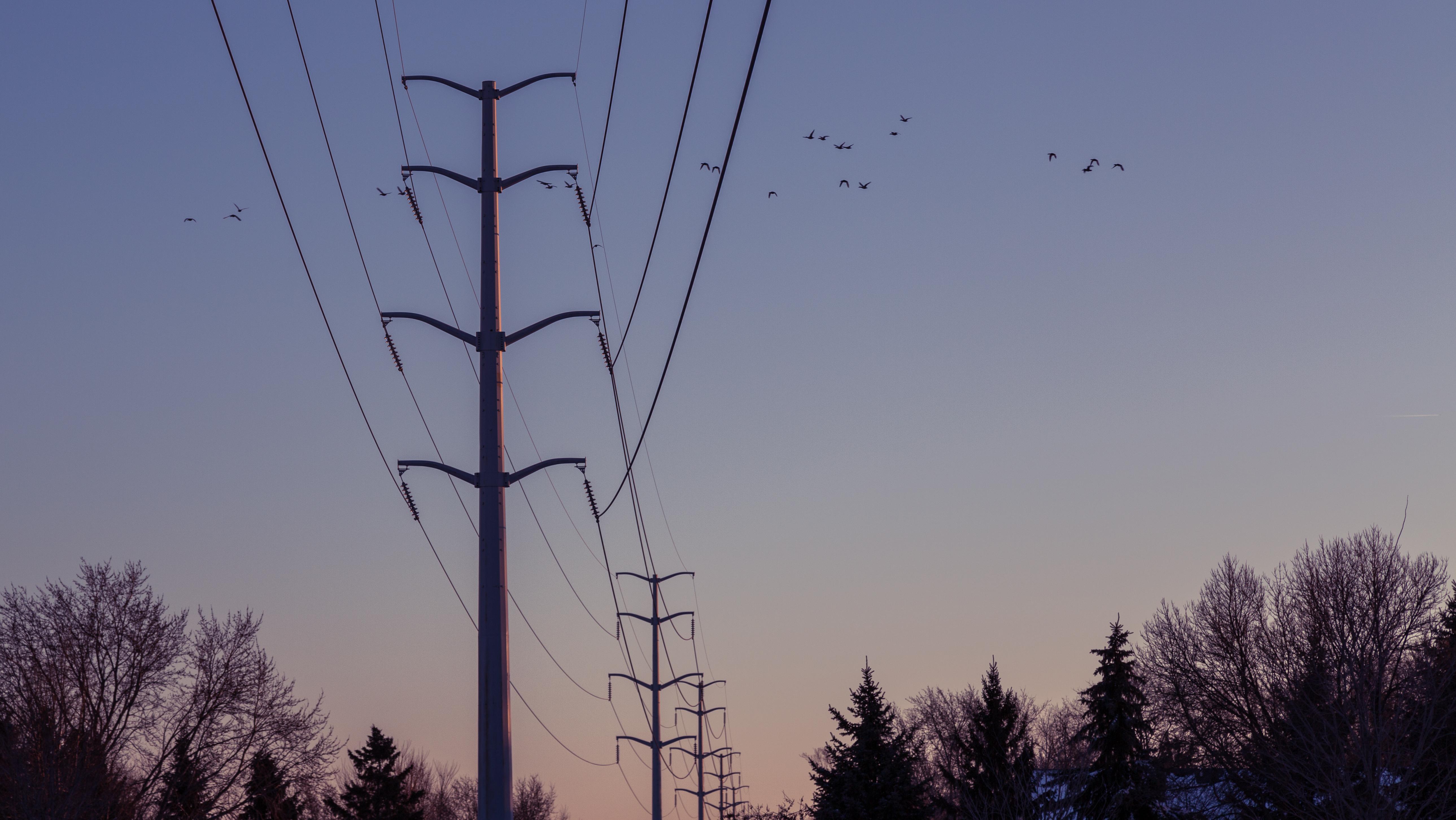 Winter power lines photo