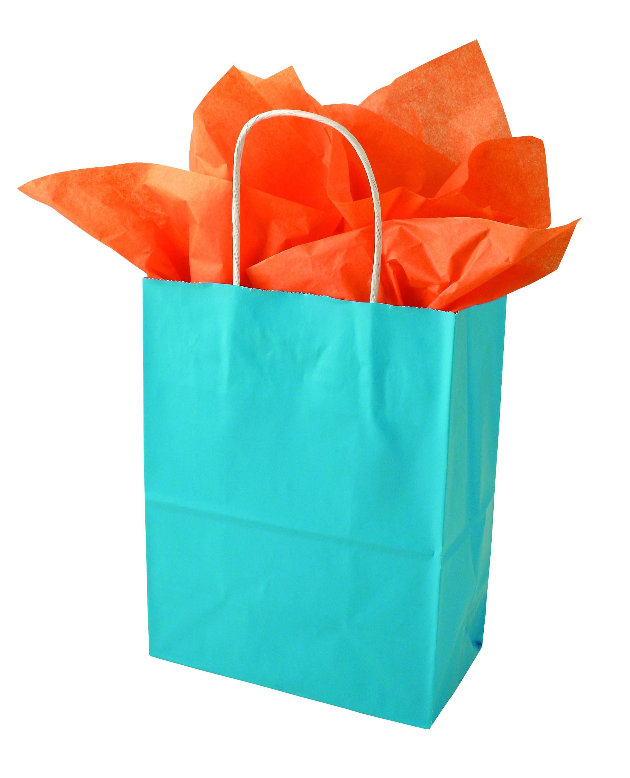 Free photo: Present bag - Sell, Sale, Retail - Free Download - Jooinn