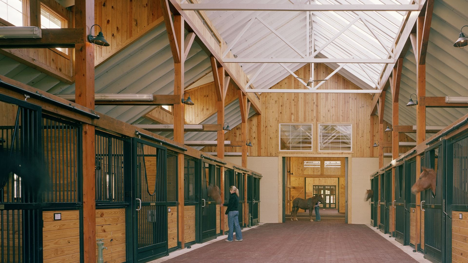 Natural light and ventilation in horse barns - why it matters - YouTube