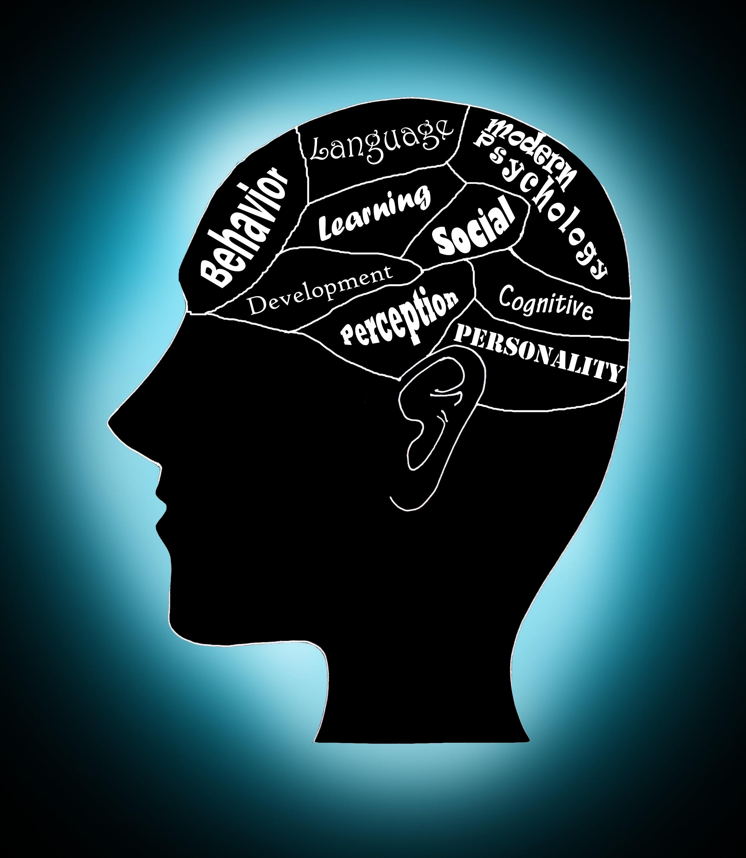 No mind reading! – A glimpse of modern psychology | Scientific ...