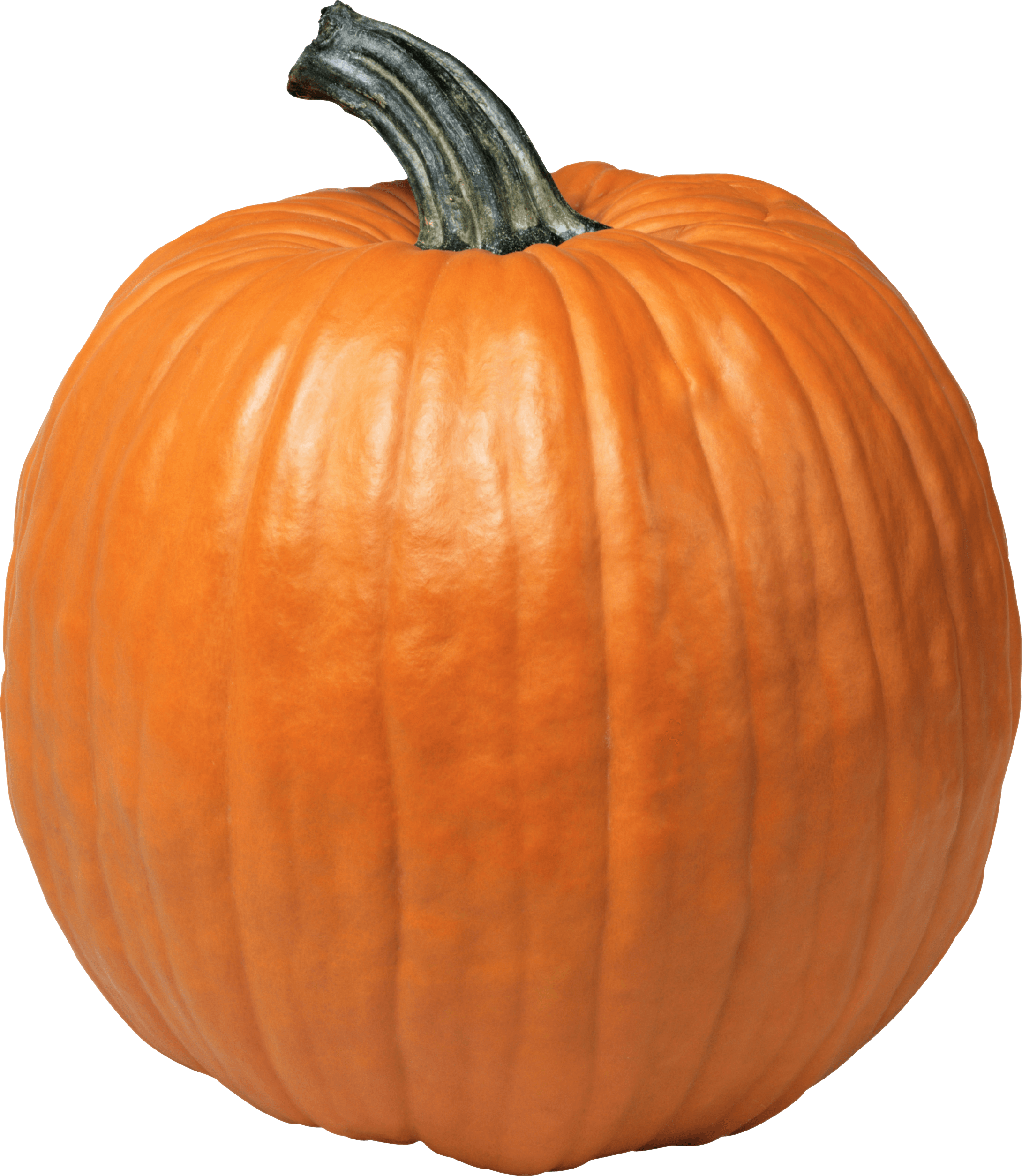 Single Pumpkin transparent PNG - StickPNG