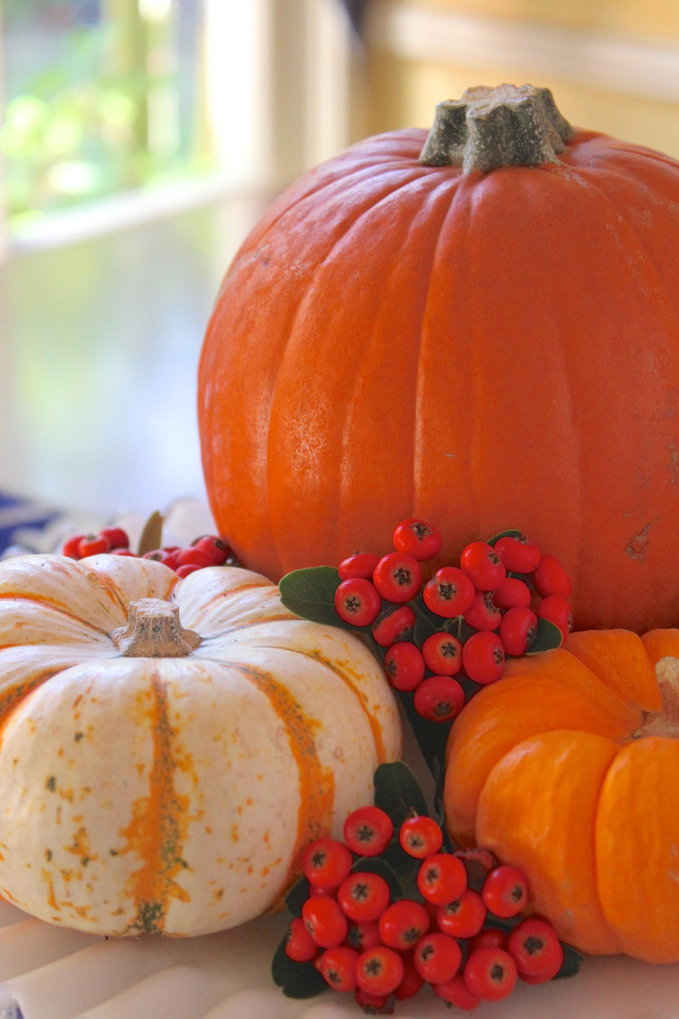 How to Prepare a Pumpkin (How to Cook, Bake or Roast a Pumpkin ...