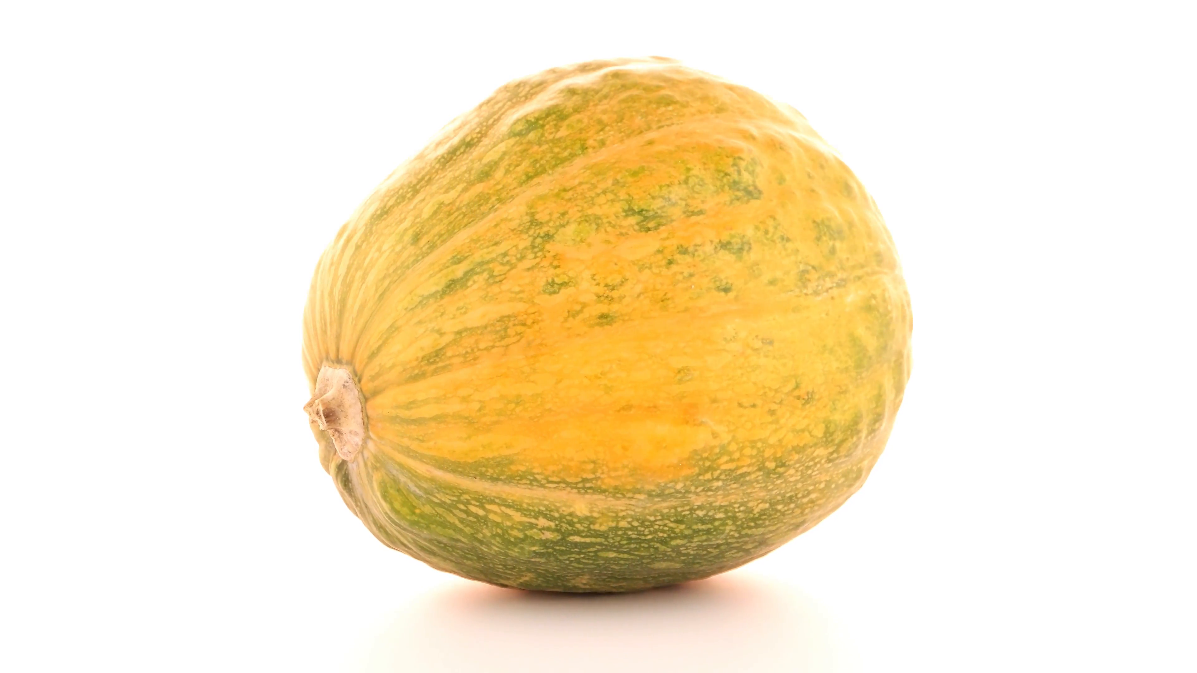 Pumpkin isolated on white background Stock Video Footage - VideoBlocks