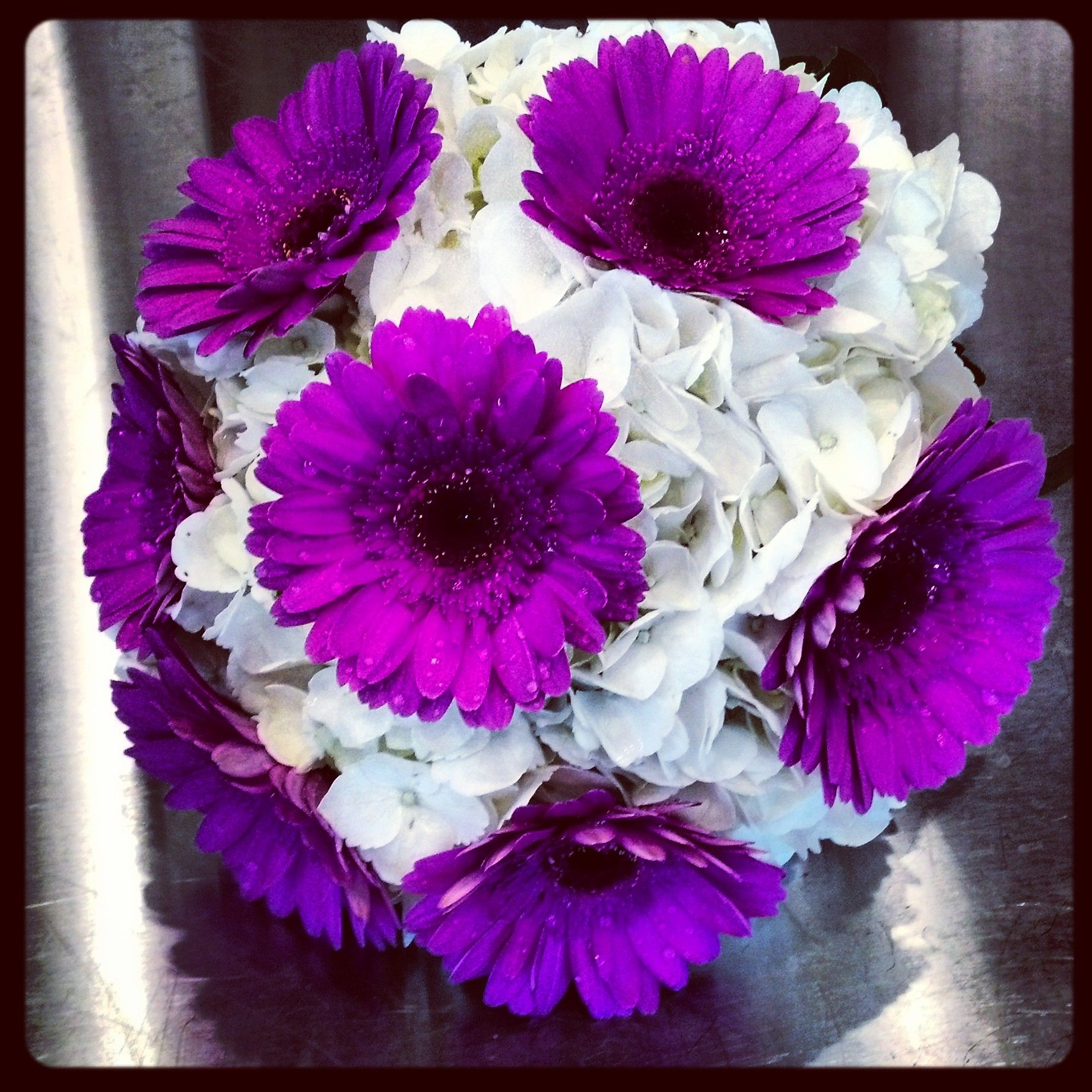 White Hydrangea. Purple Gerbera Daisies. Love this, just not so ...