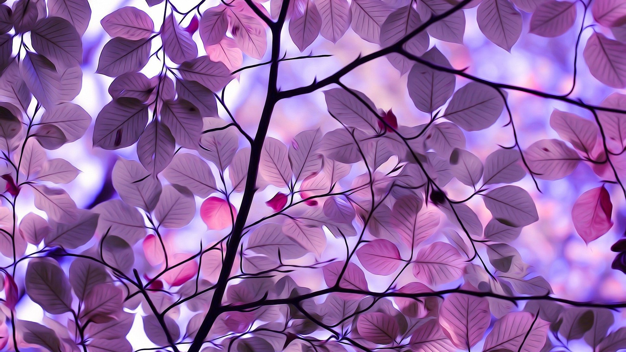 2048x1152 Purple Leaves 2048x1152 Resolution HD 4k Wallpapers ...