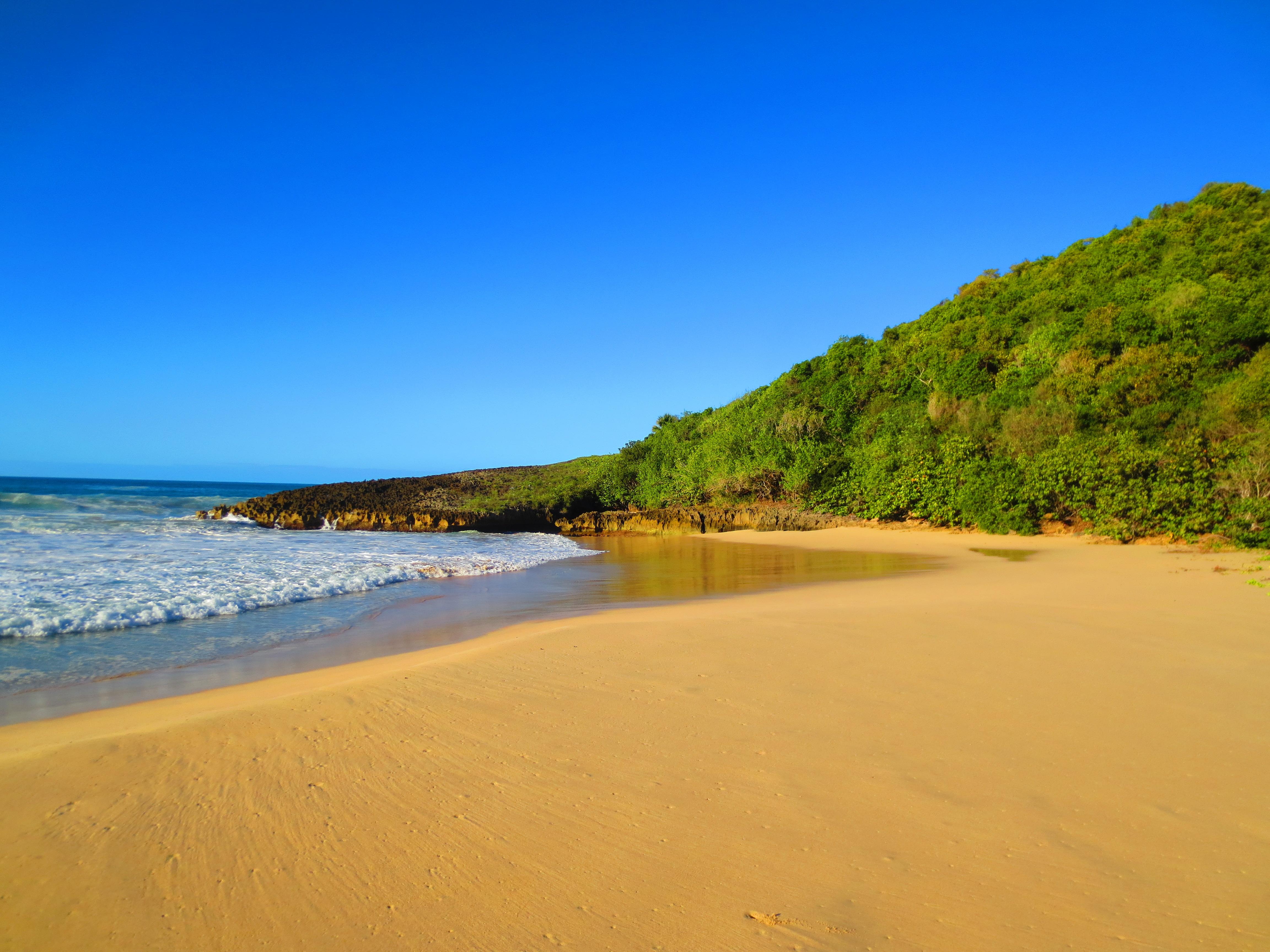 Quiet beach photo