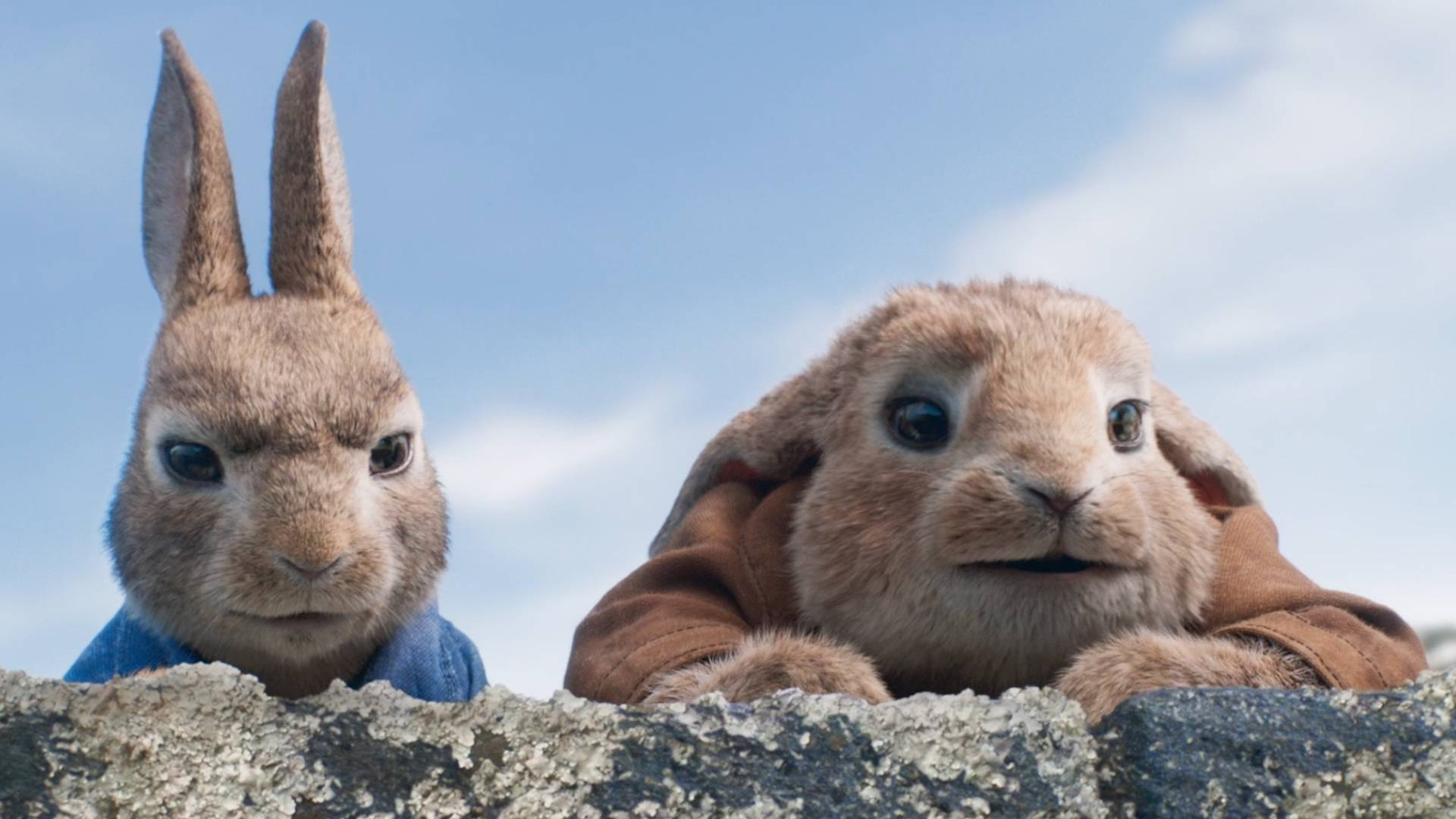 Peter Rabbit | Book tickets online | Vue Cinemas